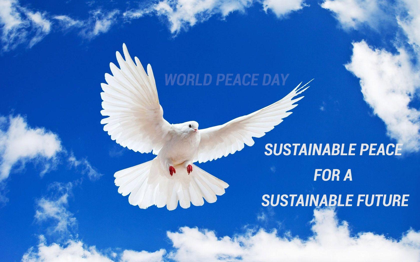 International Day of Peace Wallpapers 10
