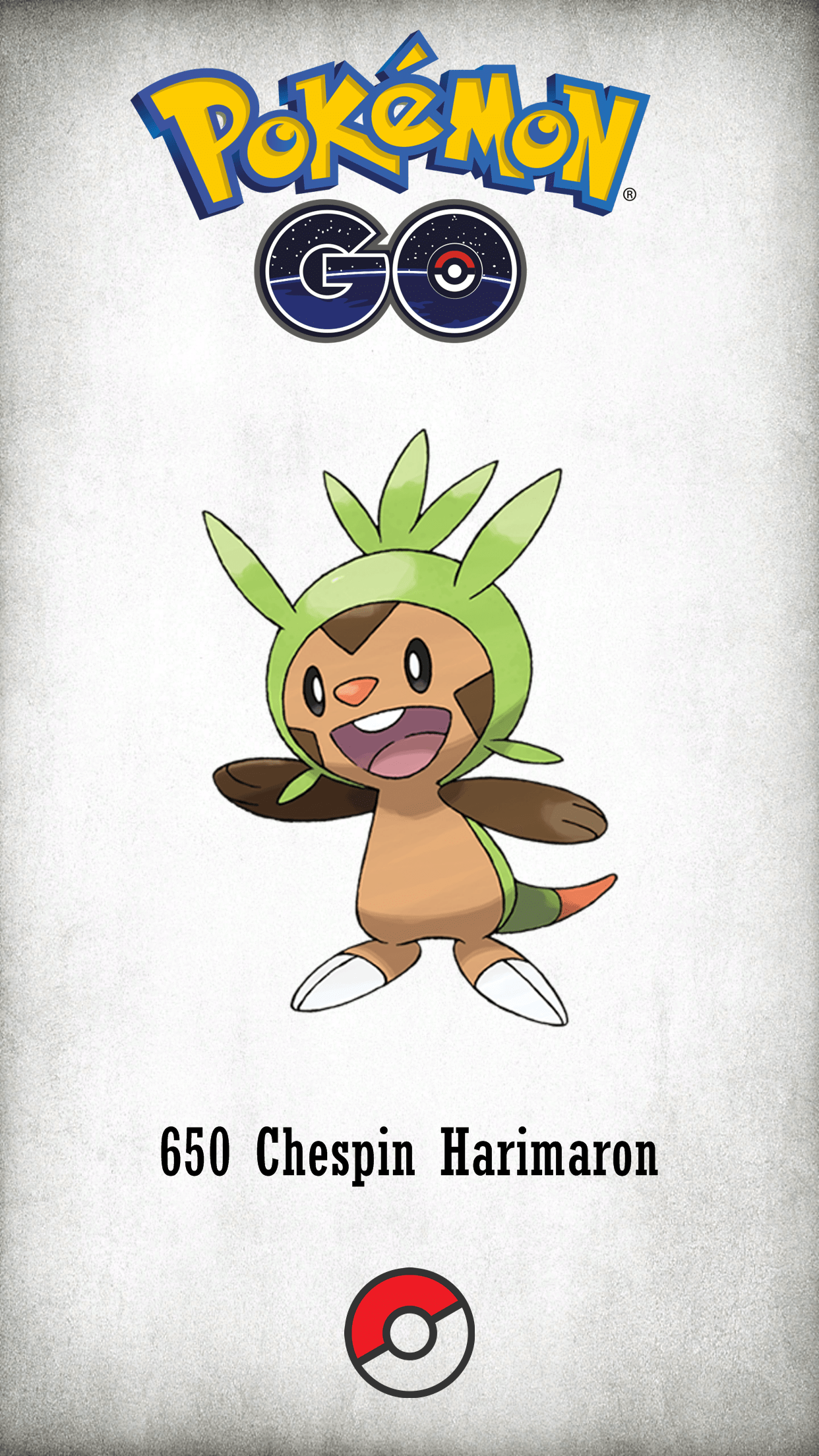 650 Character Chespin Harimaron | Wallpaper