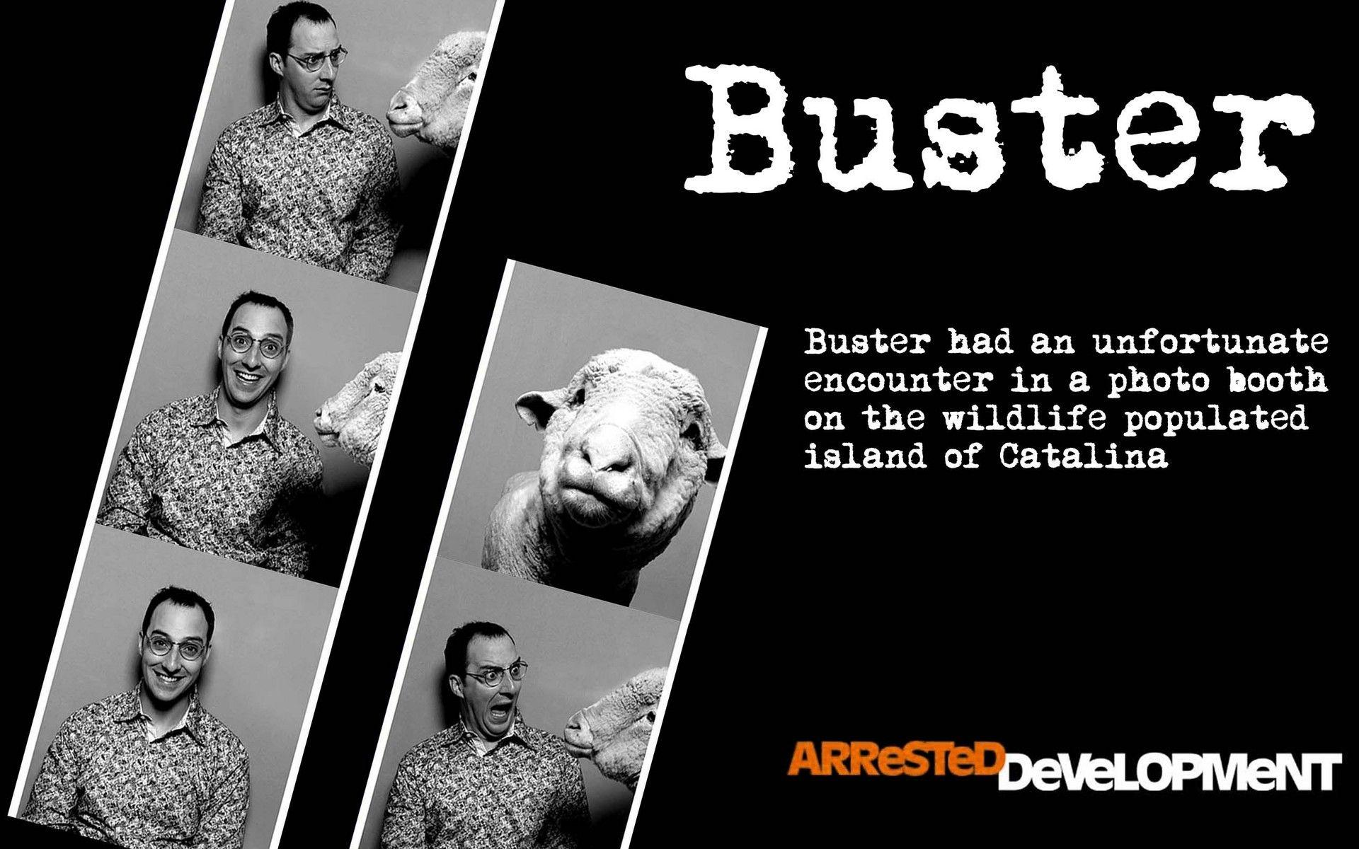 Arrested Development image Buster