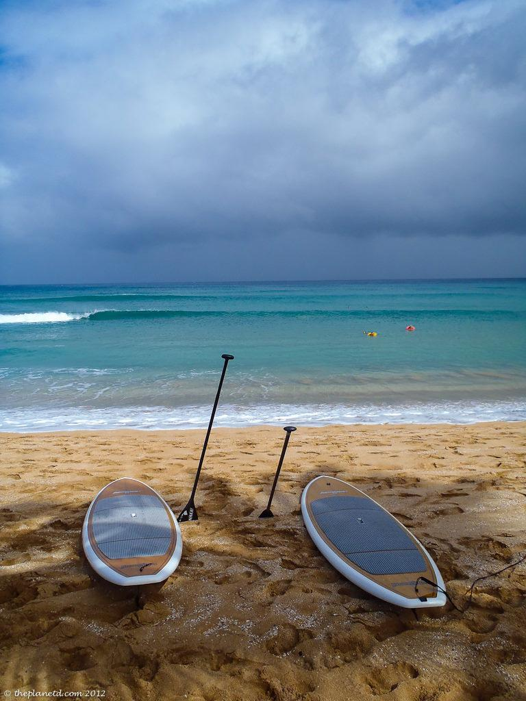 Paddleboard, SUP, Paddle Board Rentals, Paddle Boarding