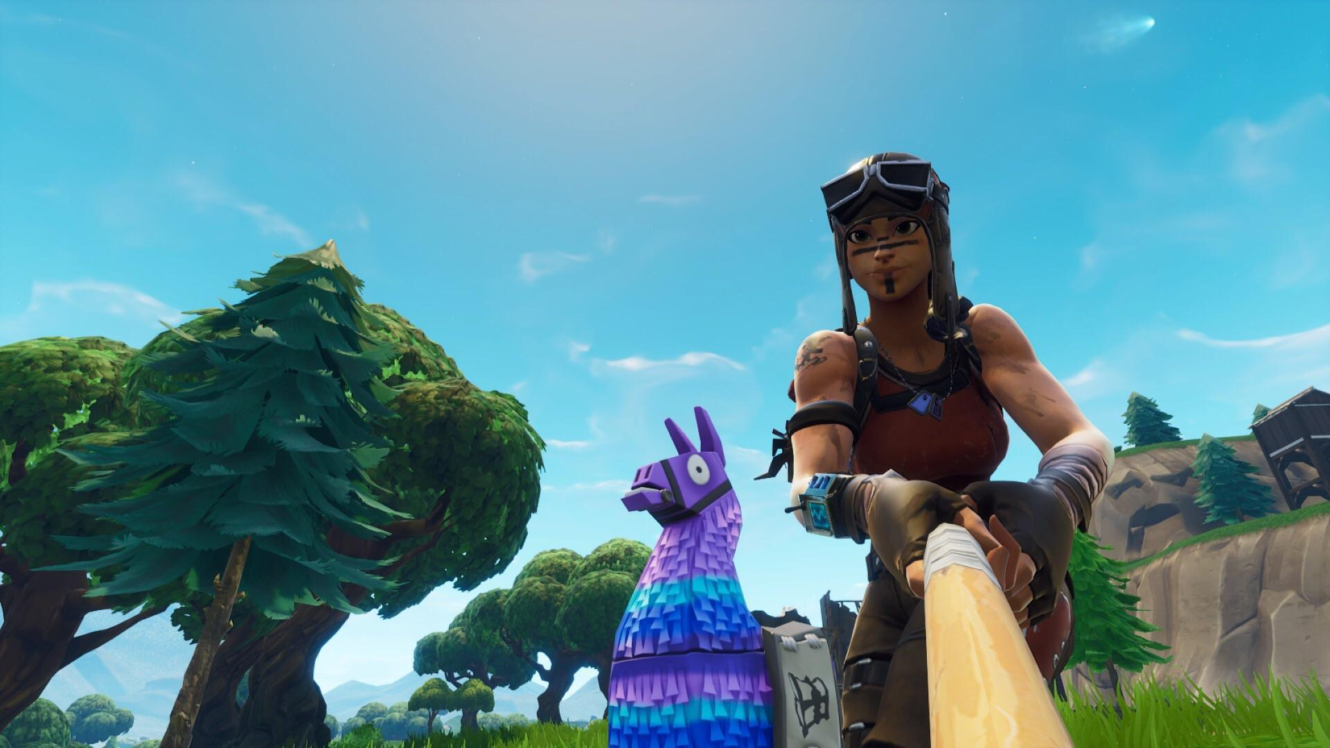 Took a selfie with a llama, ended up getting the comet too : FortNiteBR