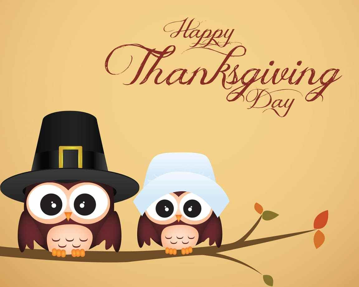 Happy Thanksgiving Images | Funny Thanksgiving 2018 Pictures HD ...