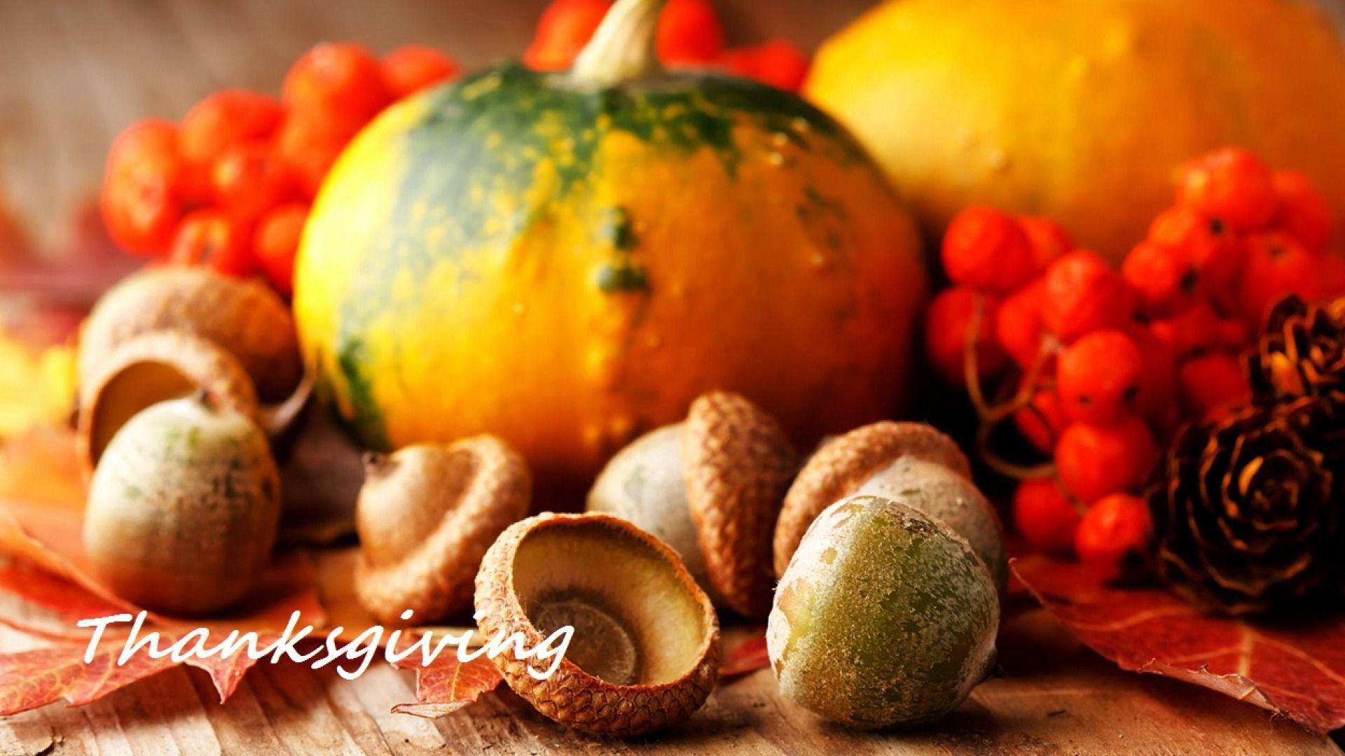 Wallpapers Thanksgiving ·①