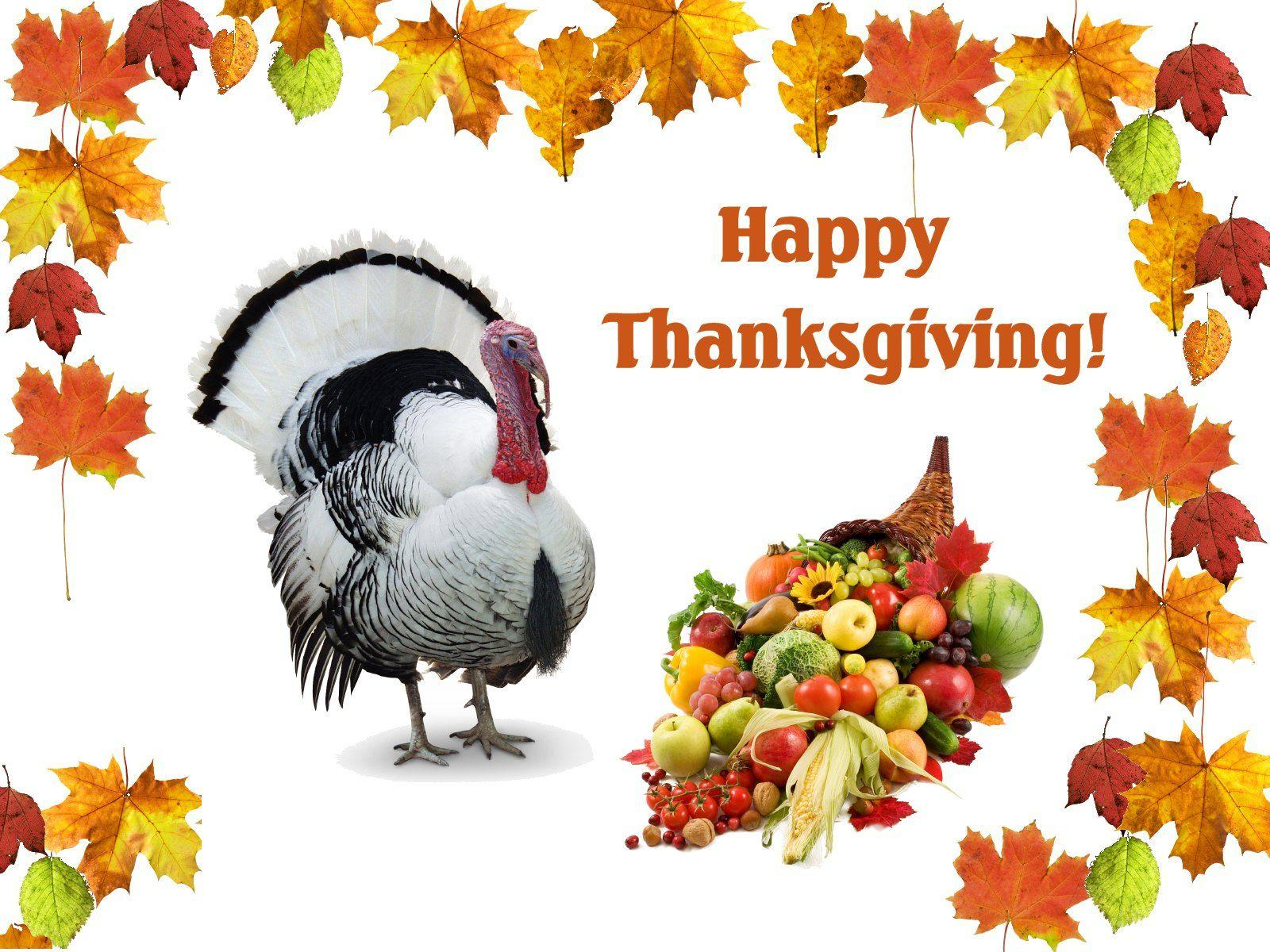 happy thankgiving day free wallpapers hd - HD Wallpaper