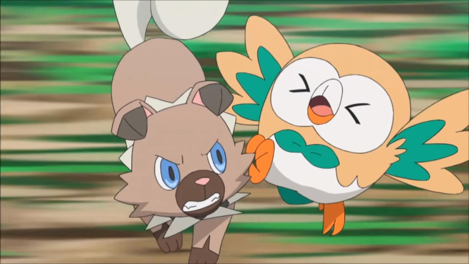 Rockruff attacks Rowlet Blank Template - Imgflip