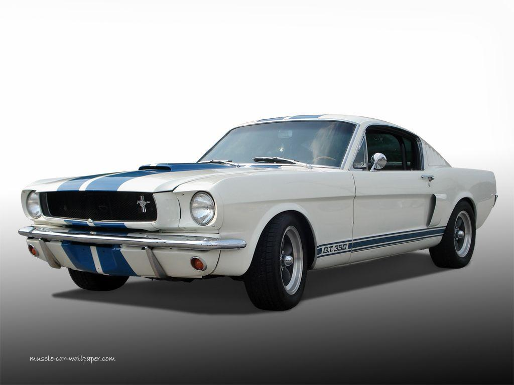 Best 47+ GT 350 Backgrounds on HipWallpapers