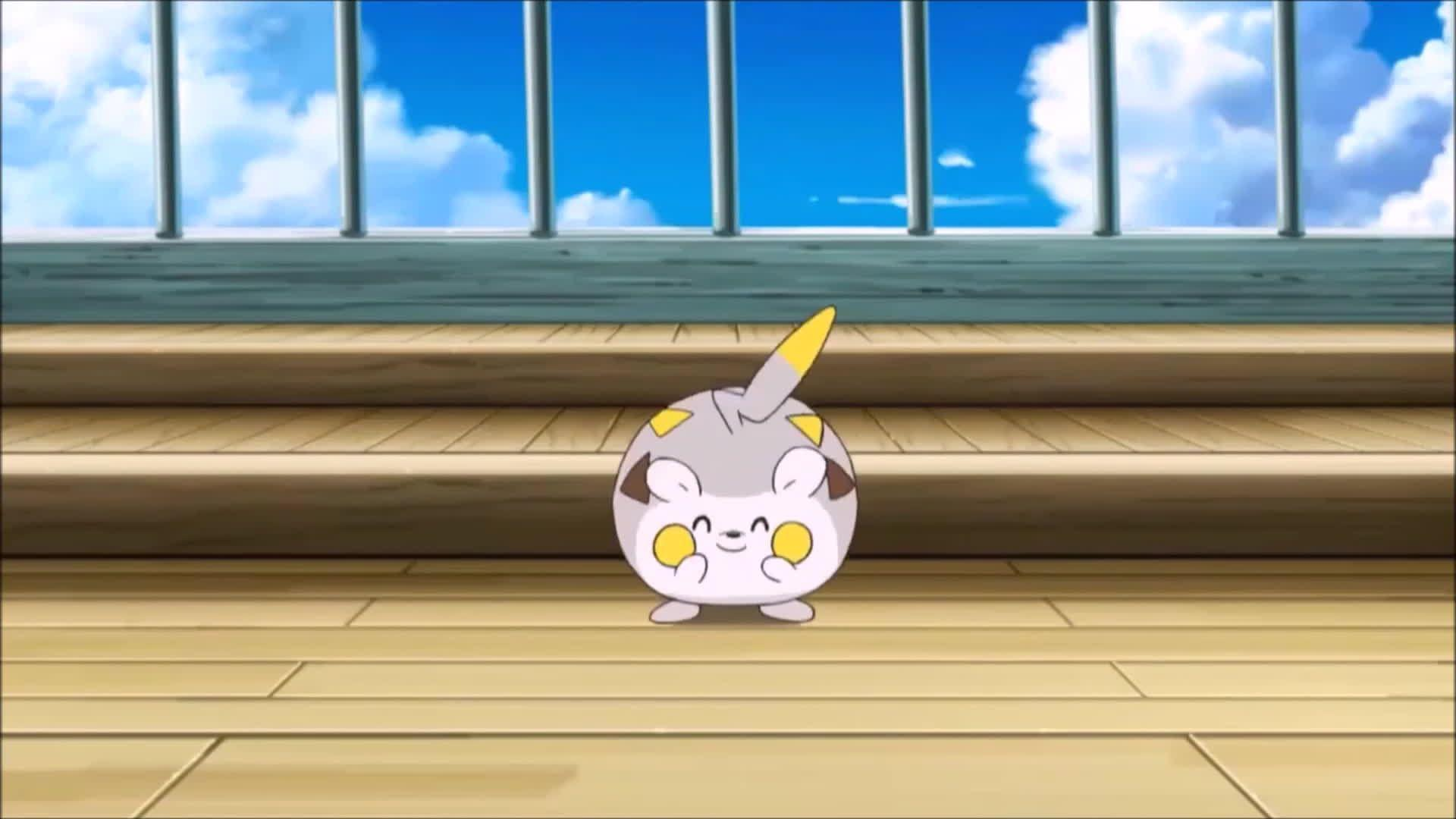Togedemaru Annoys Pikachu! Pokemon Sun and Moon Anime Episode 8 HD