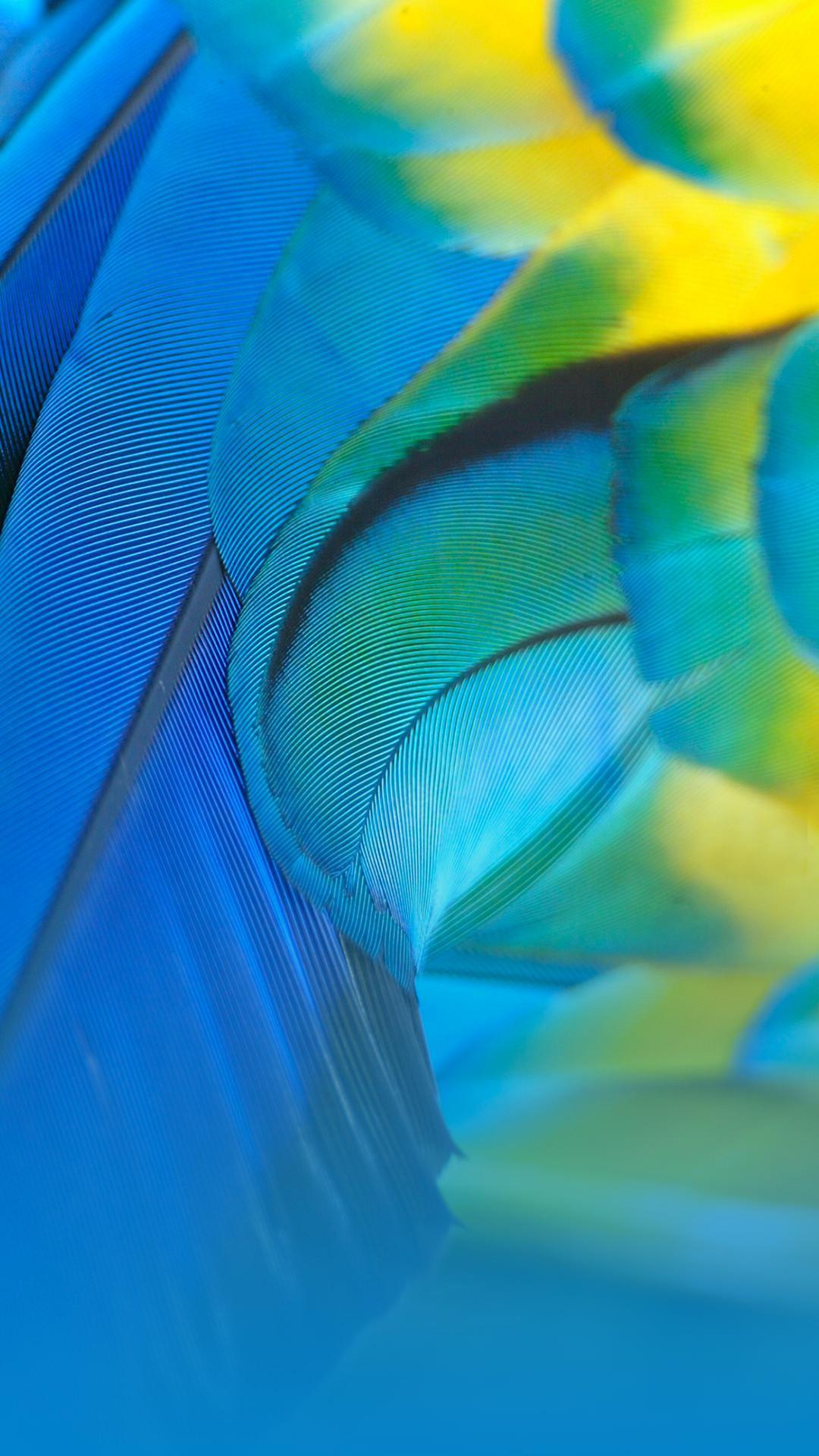 Samsung Galaxy A8 Wallpapers Wallpaper Cave
