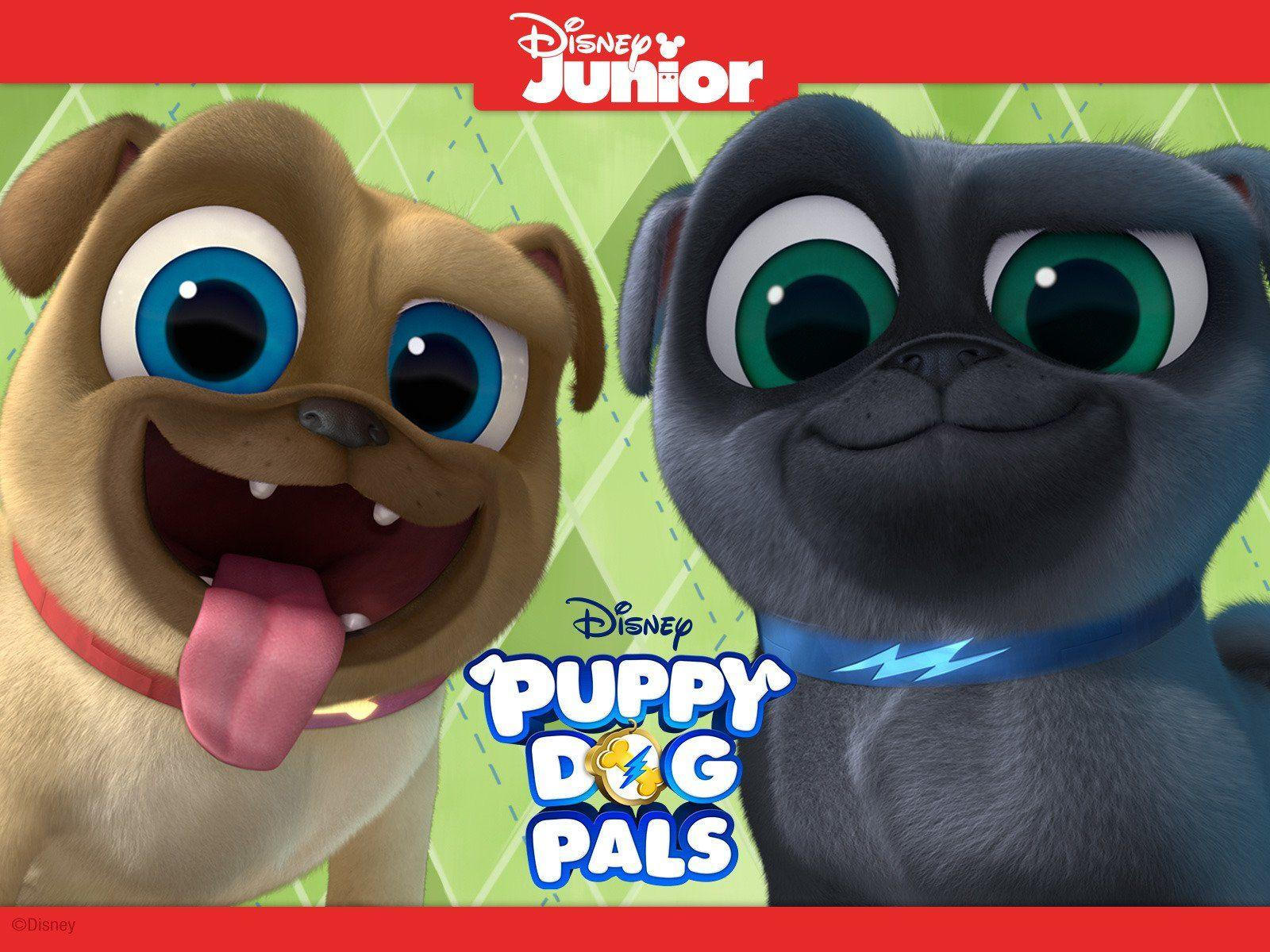 Puppy Dog Pals Wallpapers Wallpaper Cave