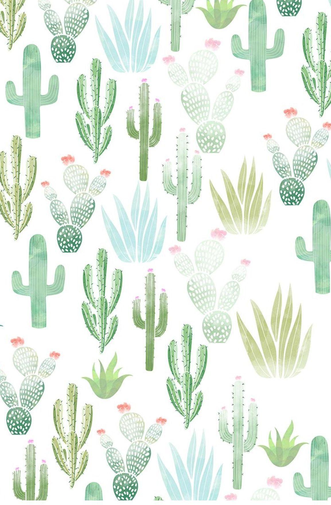 Cute Aesthetic Cactus Wallpapers Wallpaper Cave #cactus aesthetic #my aesthetics #aesthetic pictures #golderrie #aesthetics #cactus. cute aesthetic cactus wallpapers