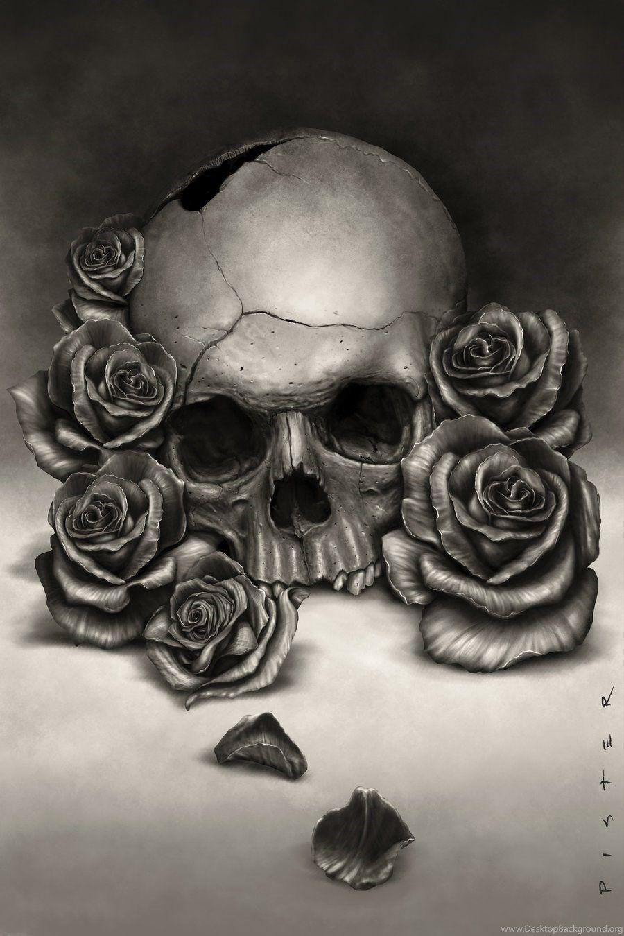 Flower Skull Rose Wallpaper Flowers Healthy