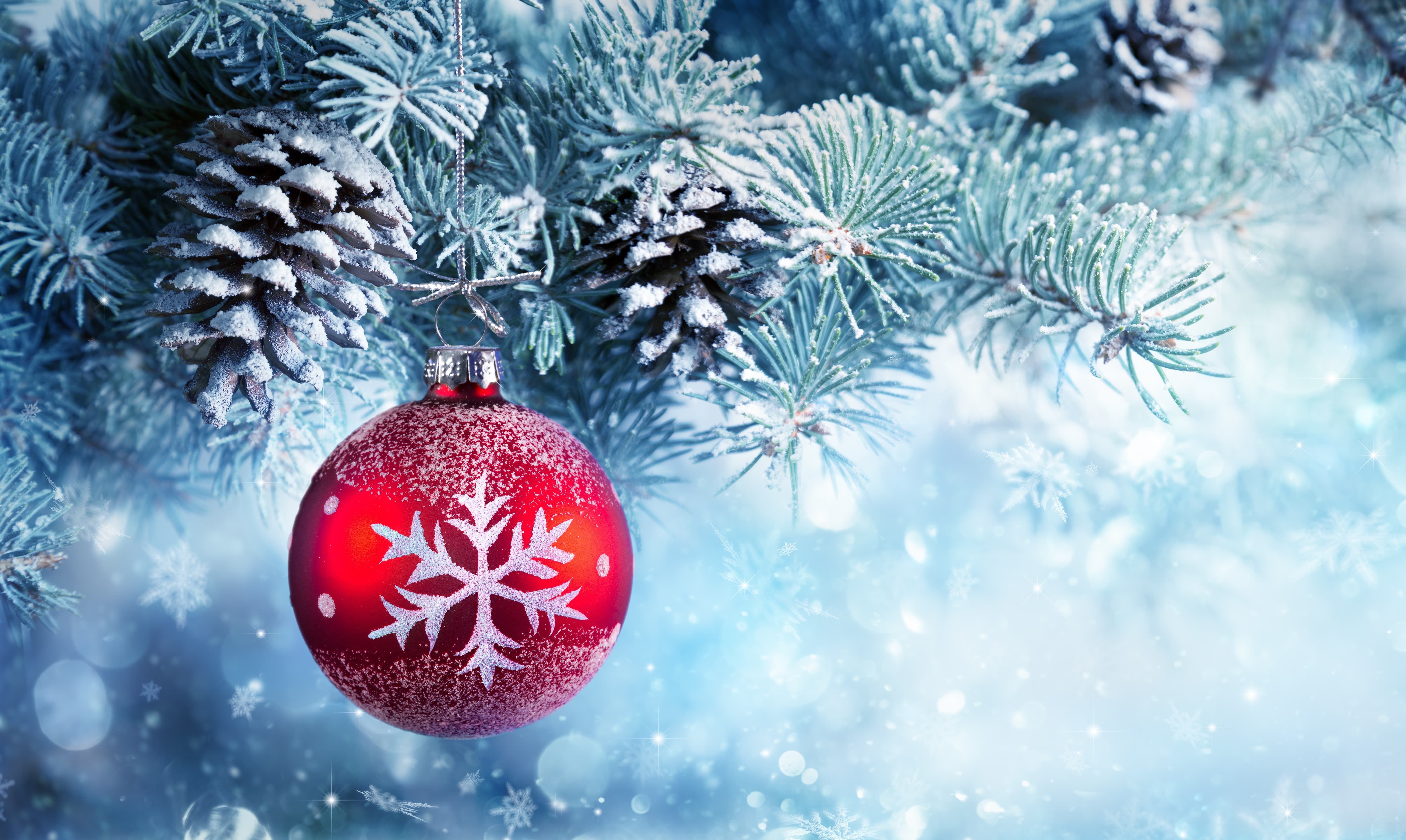 Christmas Pine Trees Wallpapers - Wallpaper Cave