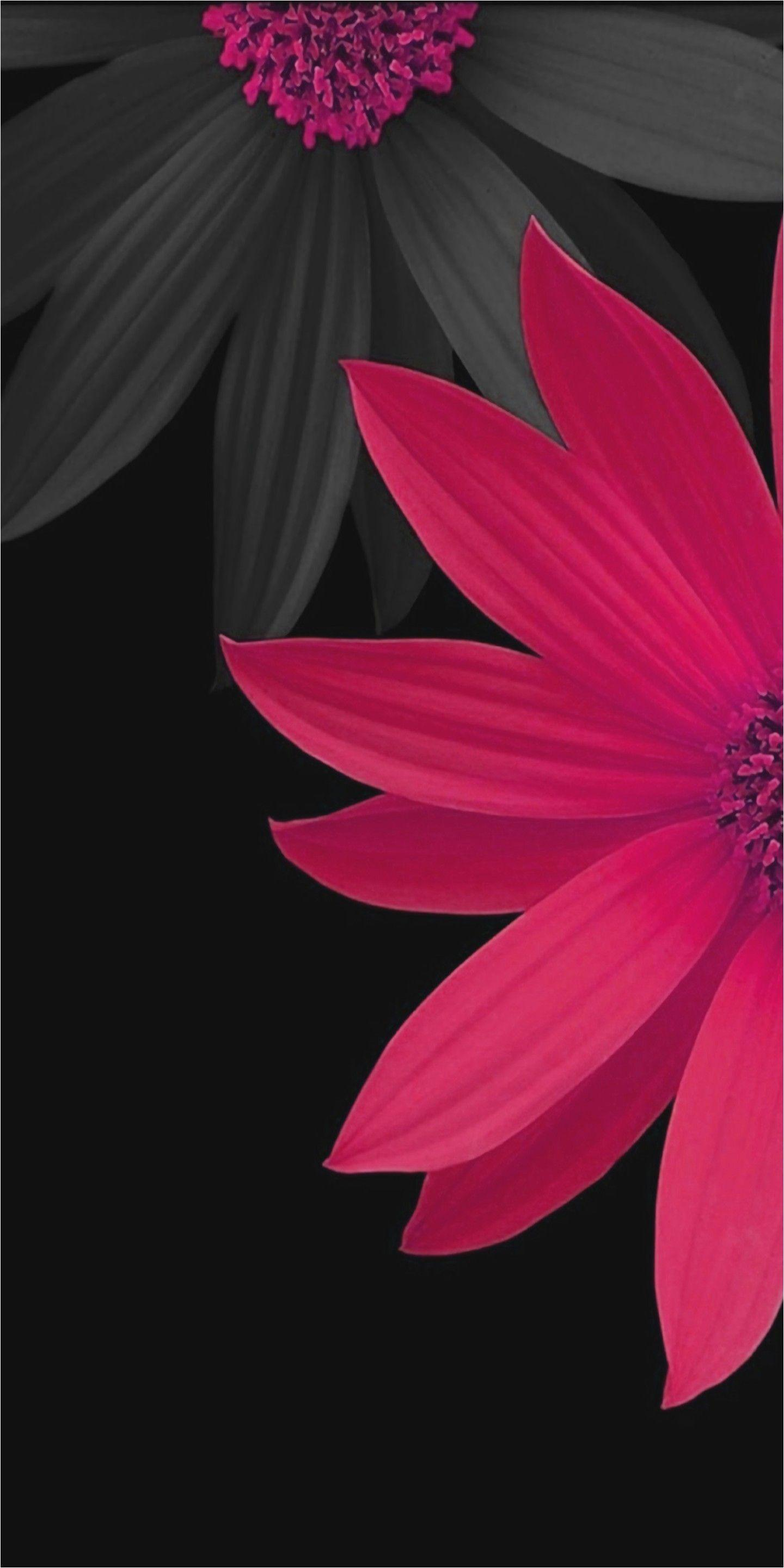 Lovely Beautiful Wallpapers for Mobile Zedge