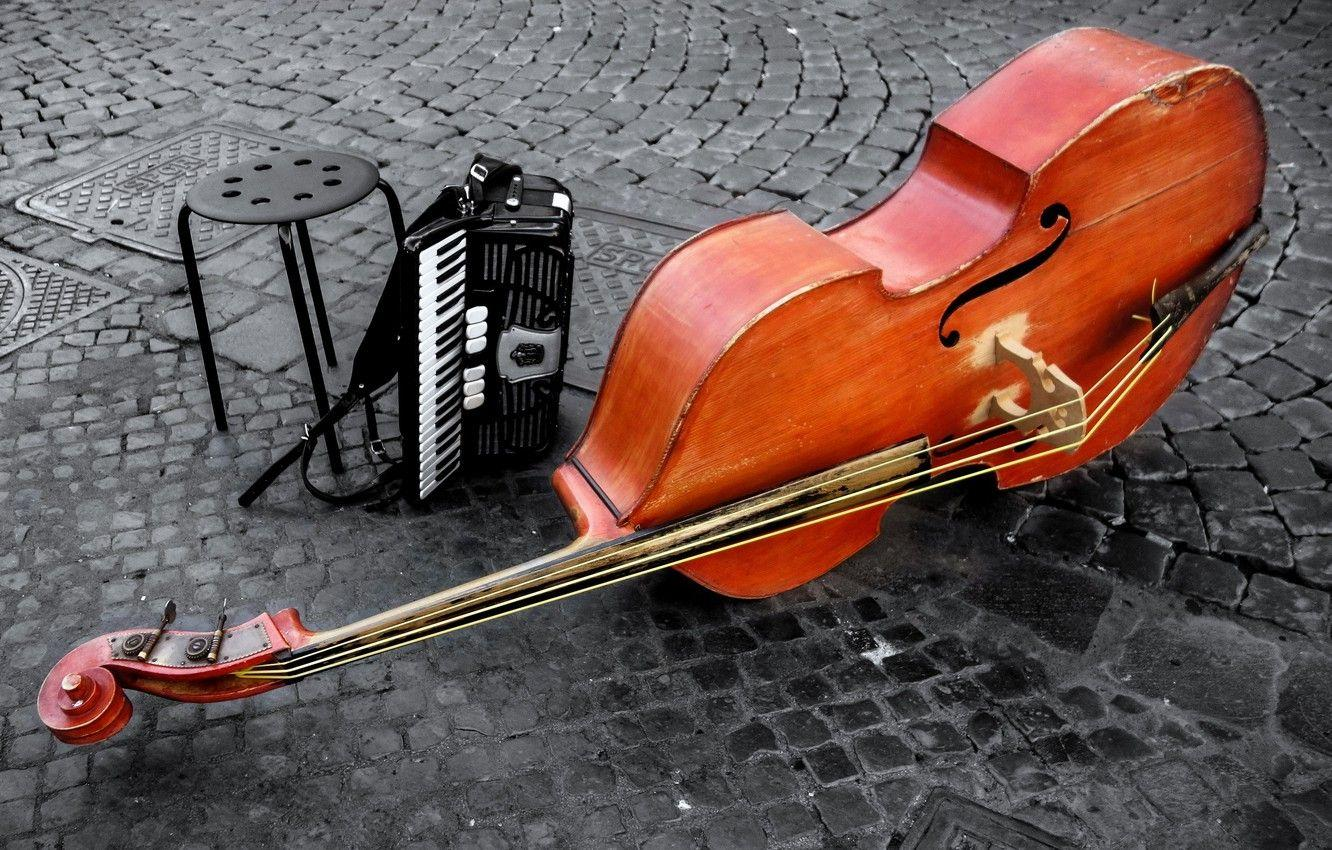 Wallpapers violin, double bass, instrumentos, rope image for desktop