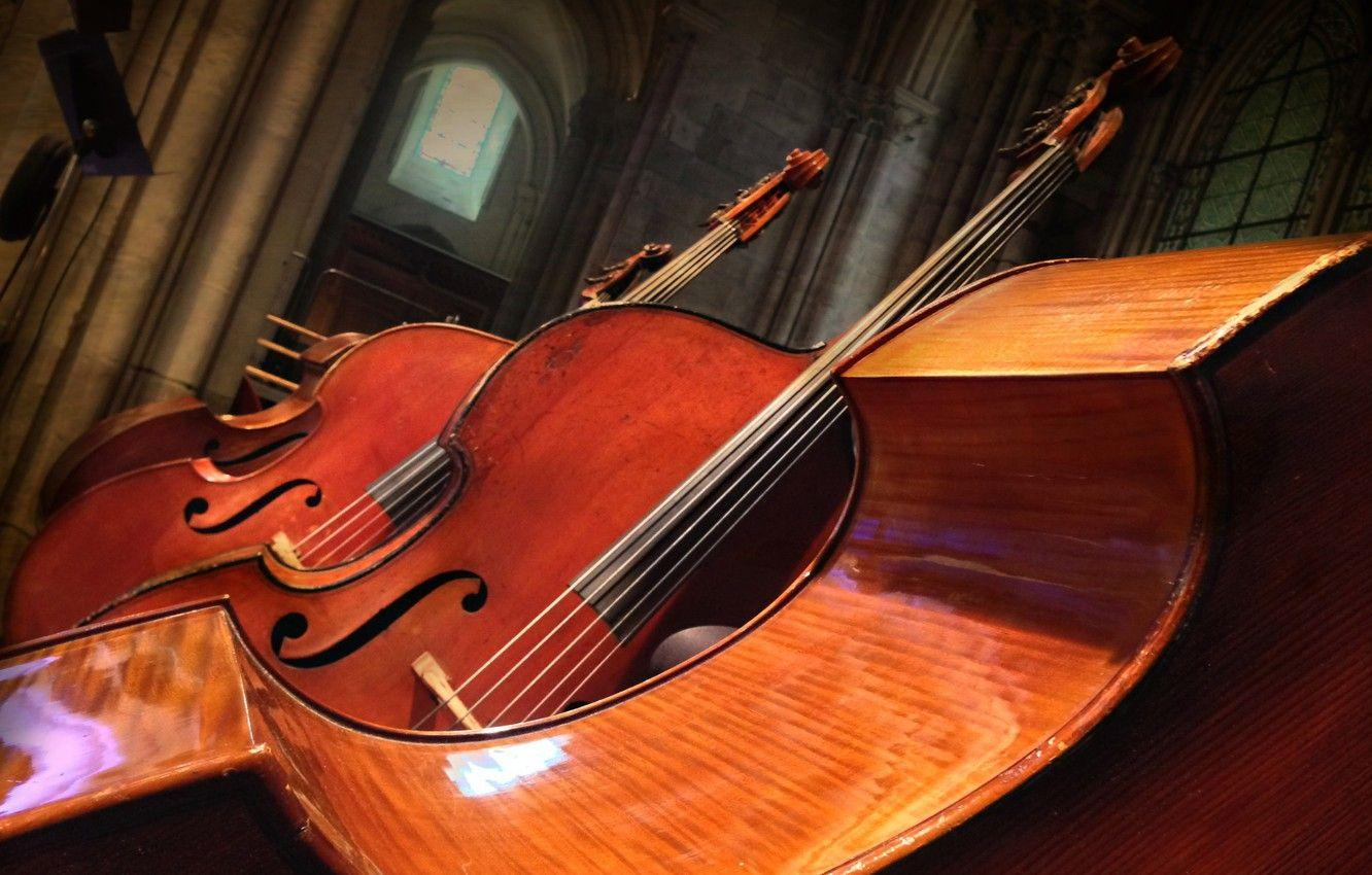 Wallpapers music, background, Double bass image for desktop, section
