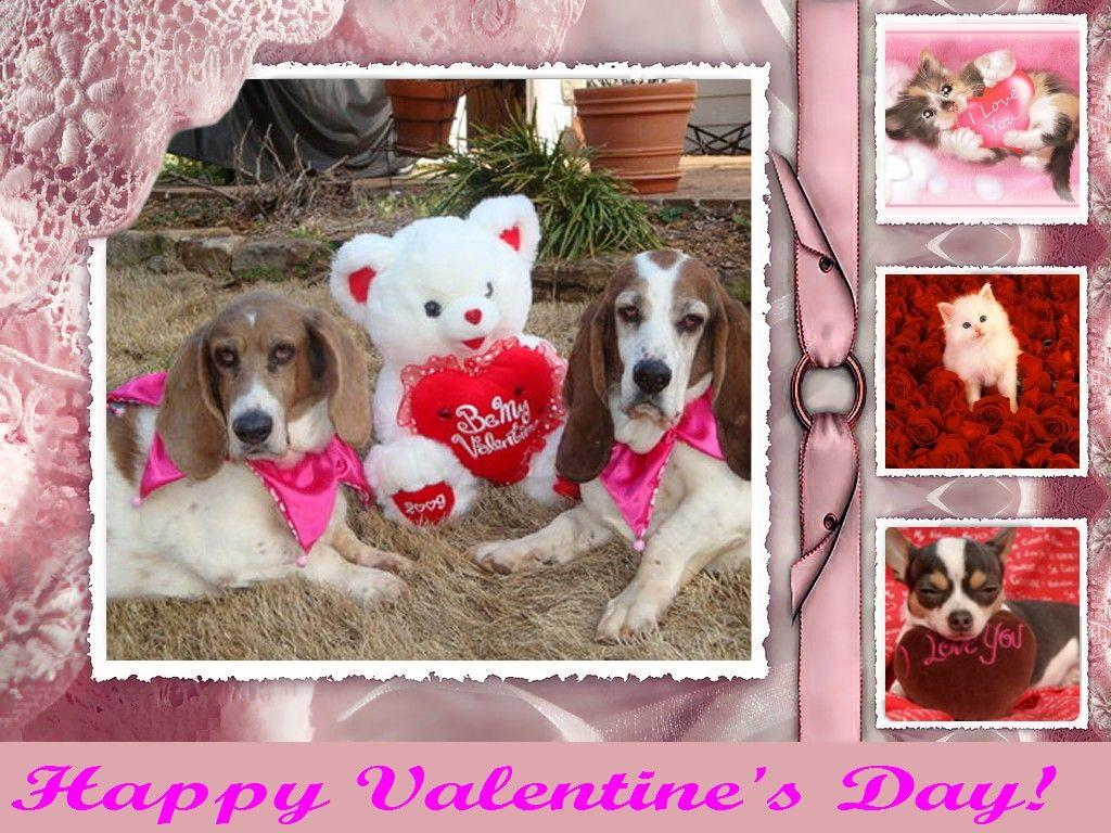 Valentine Dog | Free Valentines Day Wallpapers, Valentines Day ...