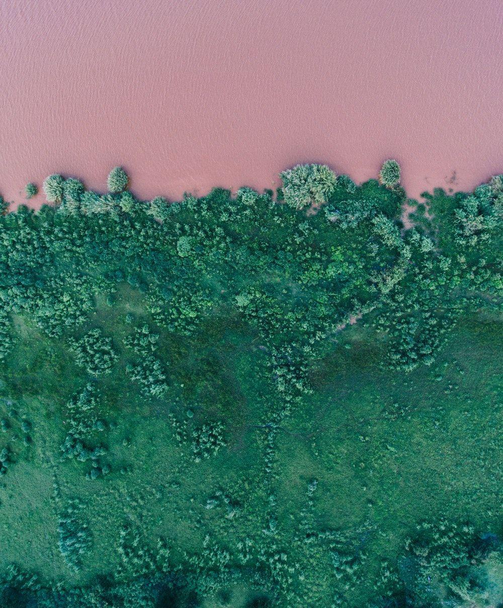 Green Aesthetics Wallpapers - Wallpaper Cave