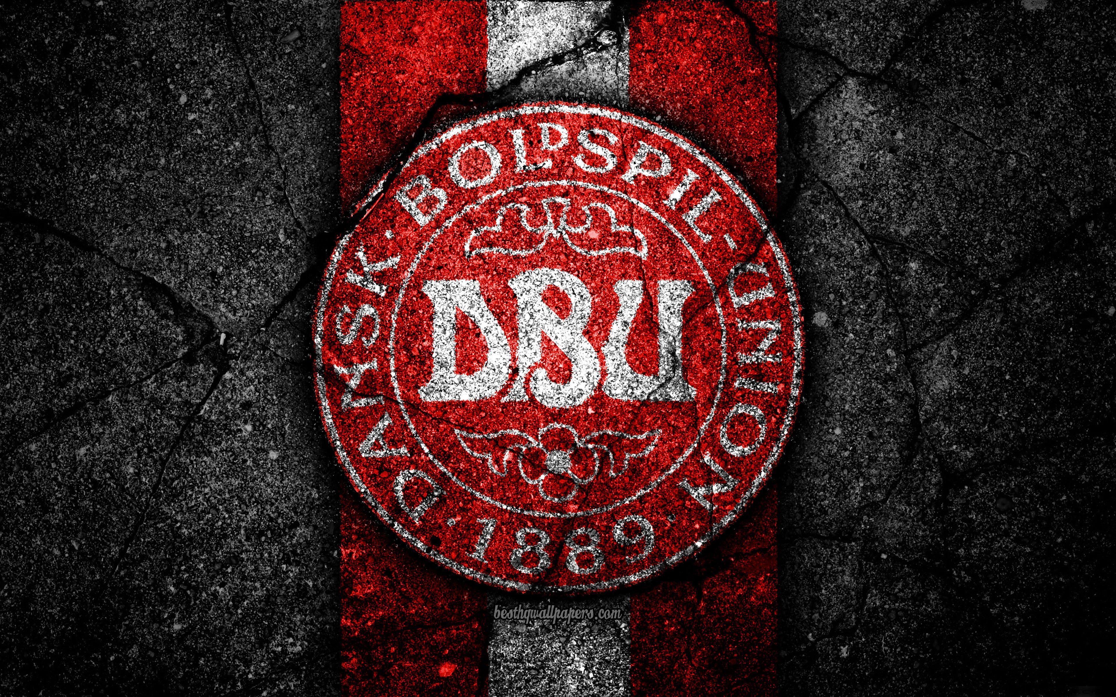 Denmark National Football Team Background 10