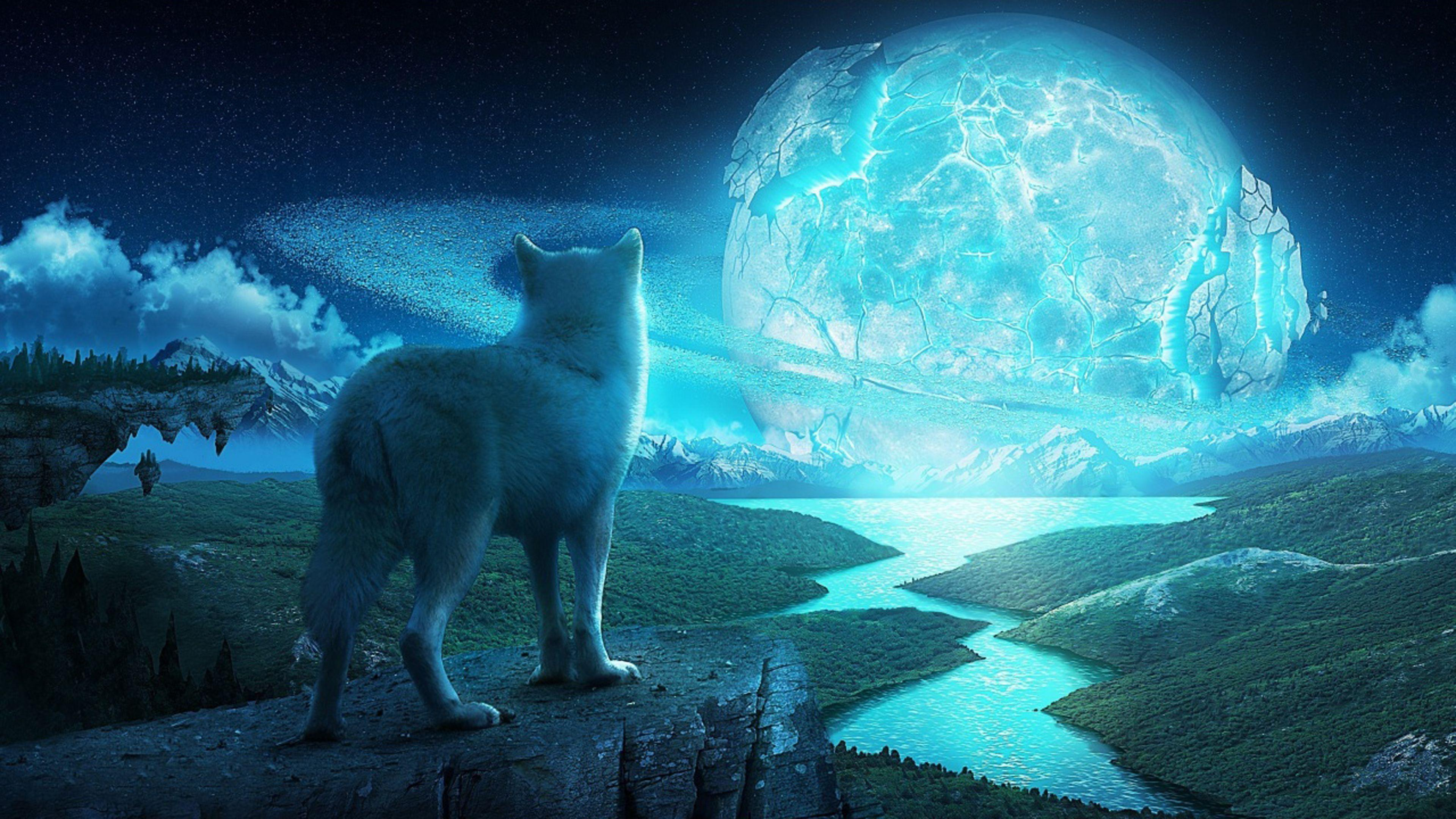 Wolf in a fantasy world Ultra HD 4K Wallpapers