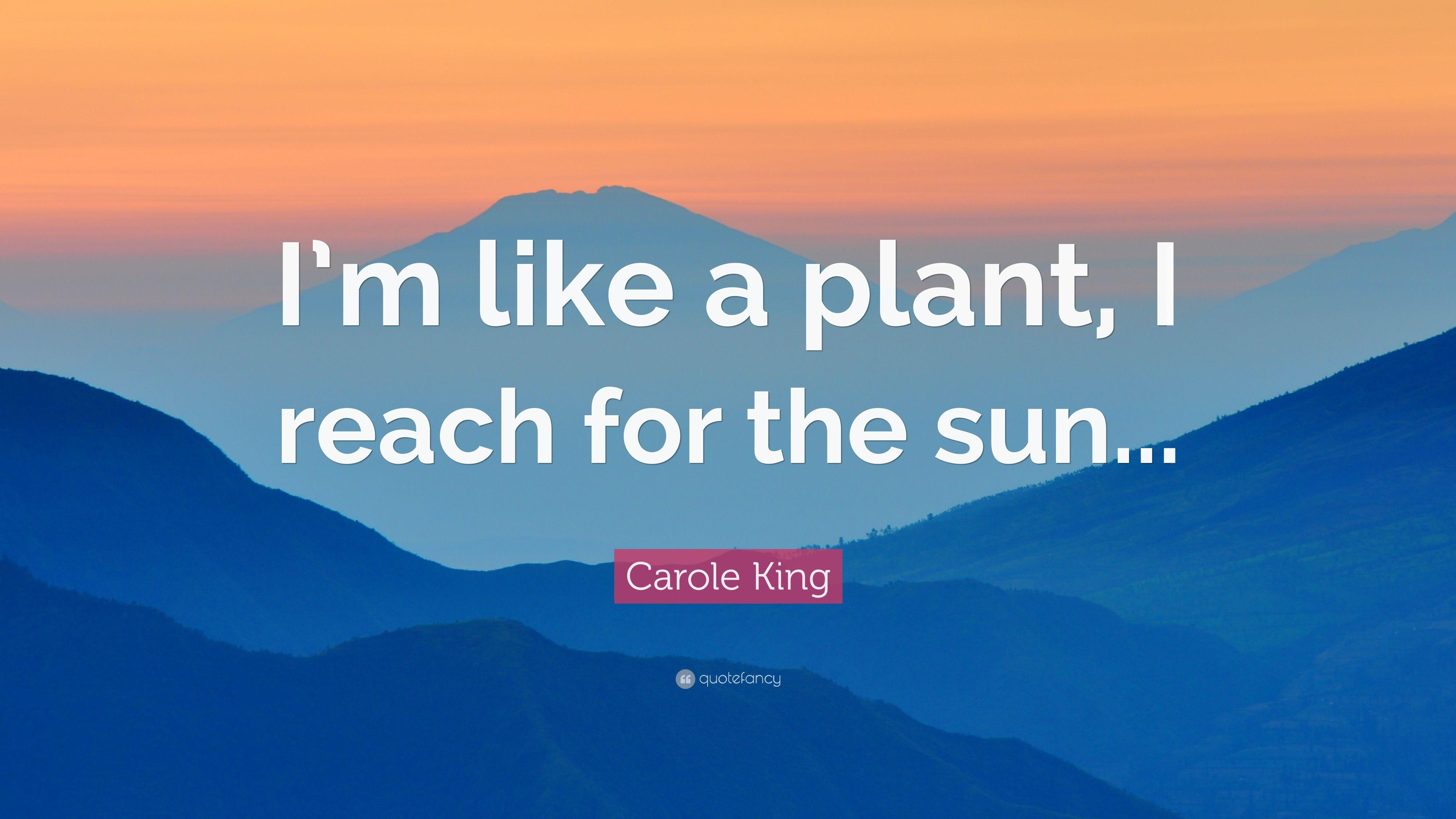 "Carole King Quote: ""I'm like a plant, I reach for the sun..."""