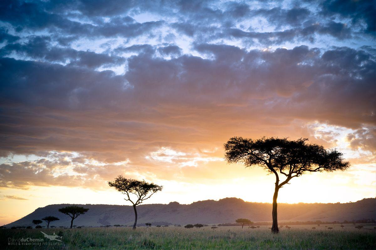 Postcard & Wallpapers from Kenya | David duChemin - World ...
