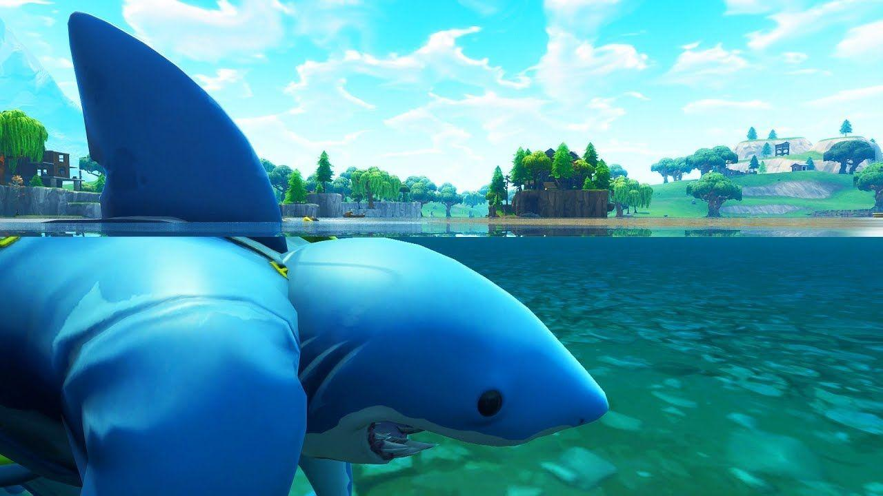 Fortnite Epic Shark | www.picsbud.com