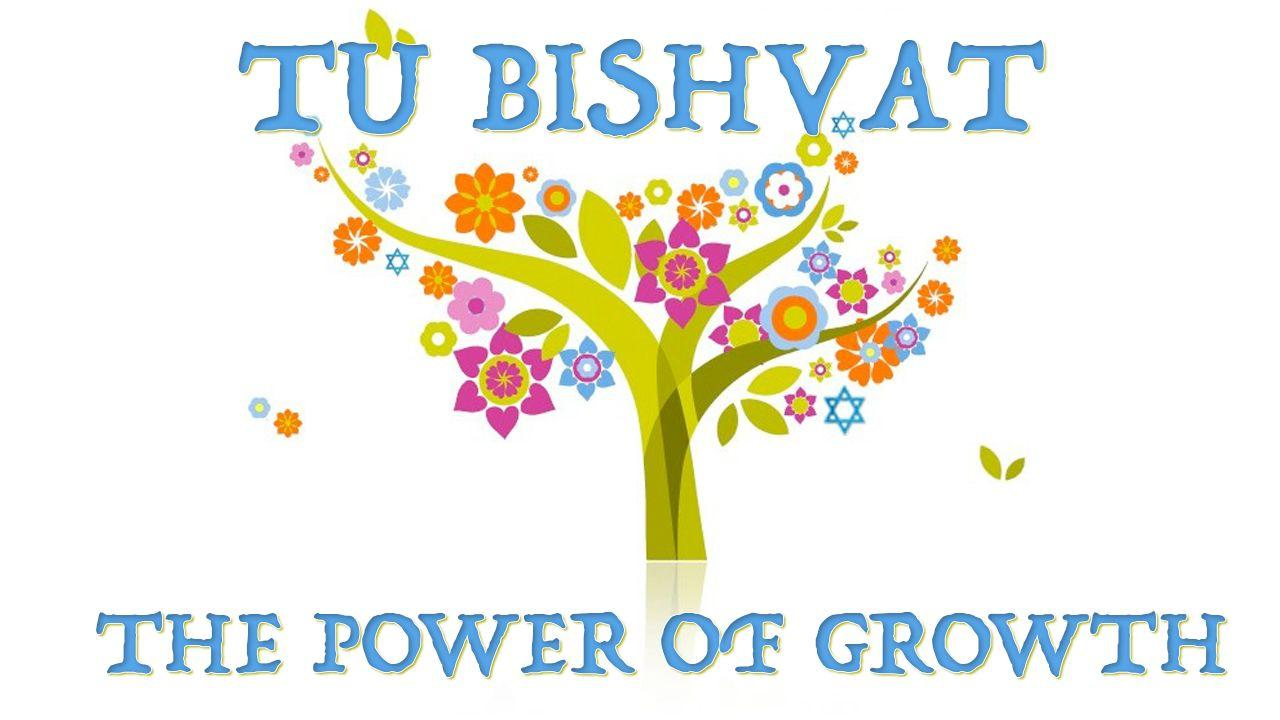 Atzmut – The power of growth – Tu Bishvat