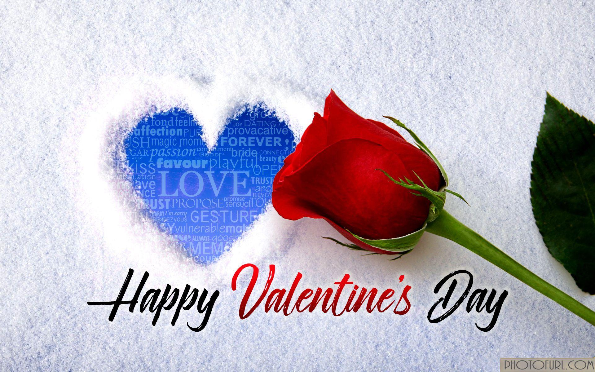 Happy Valentine's Day 2019 Love Wallpapers Free Download
