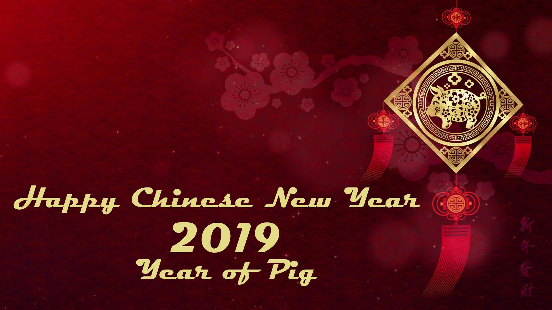 Chinese New Year 2019 Wallpapers – Year of the Pig