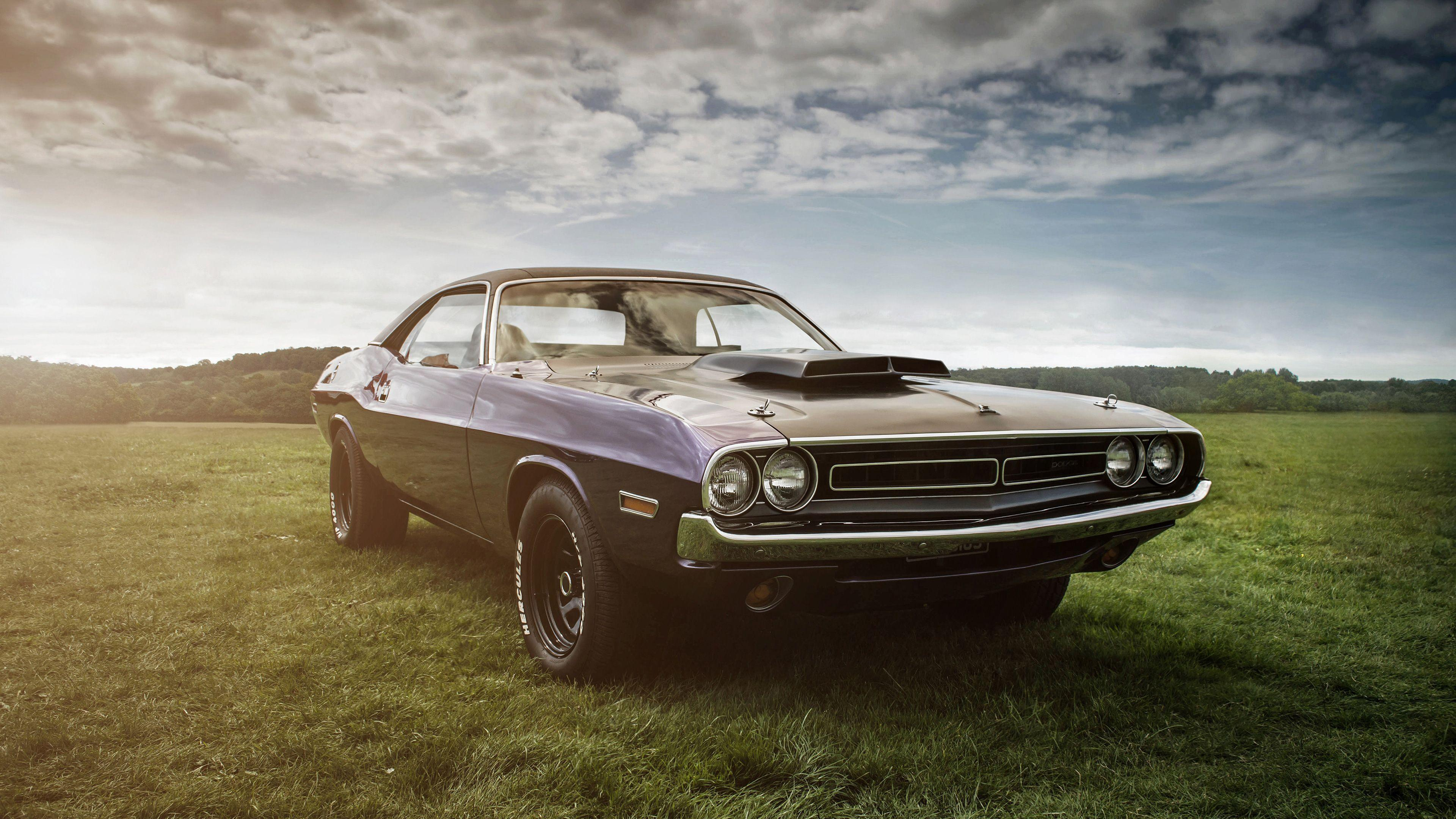 Dodge Challenger Hd 4k vintage cars wallpapers, muscle cars