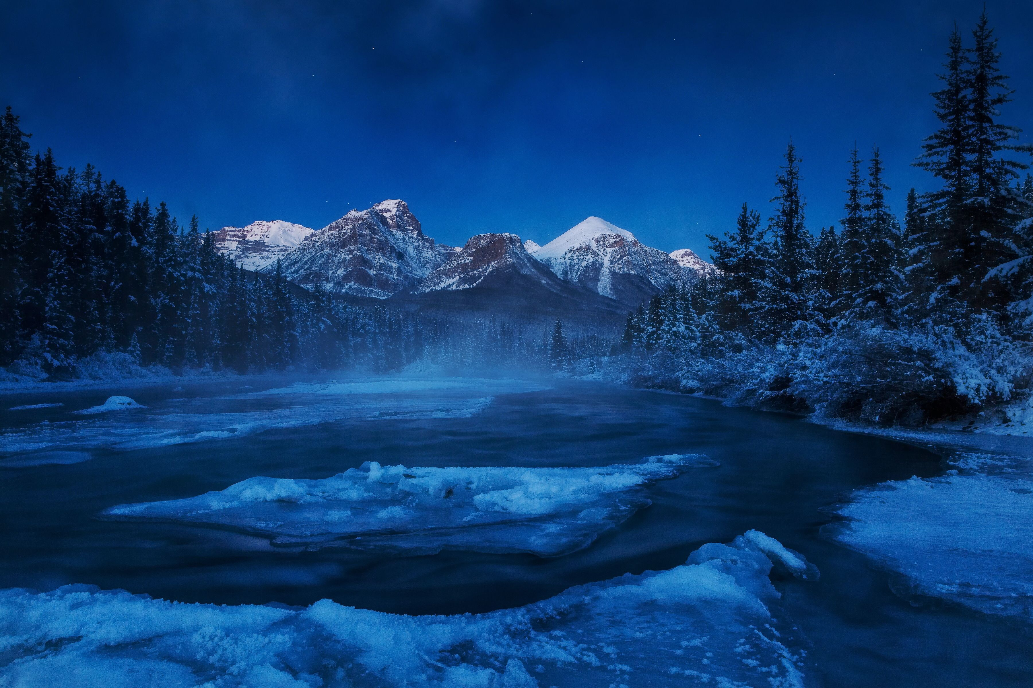 firs, winter, landscape, snow, river, Canada :: Wallpapers
