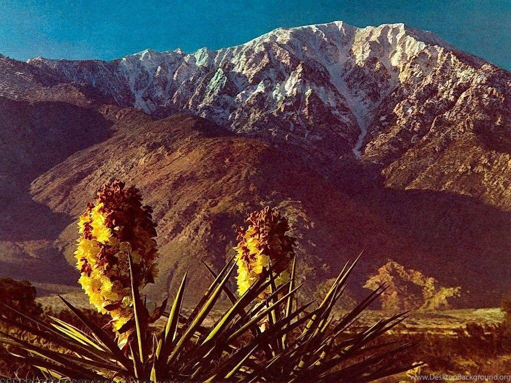 Mt San Jacinto Southern California Nature Wallpapers Image