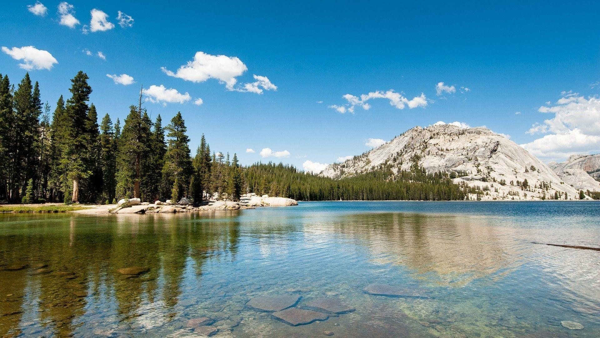 landscape nature lake hills forest pine trees yosemite national park