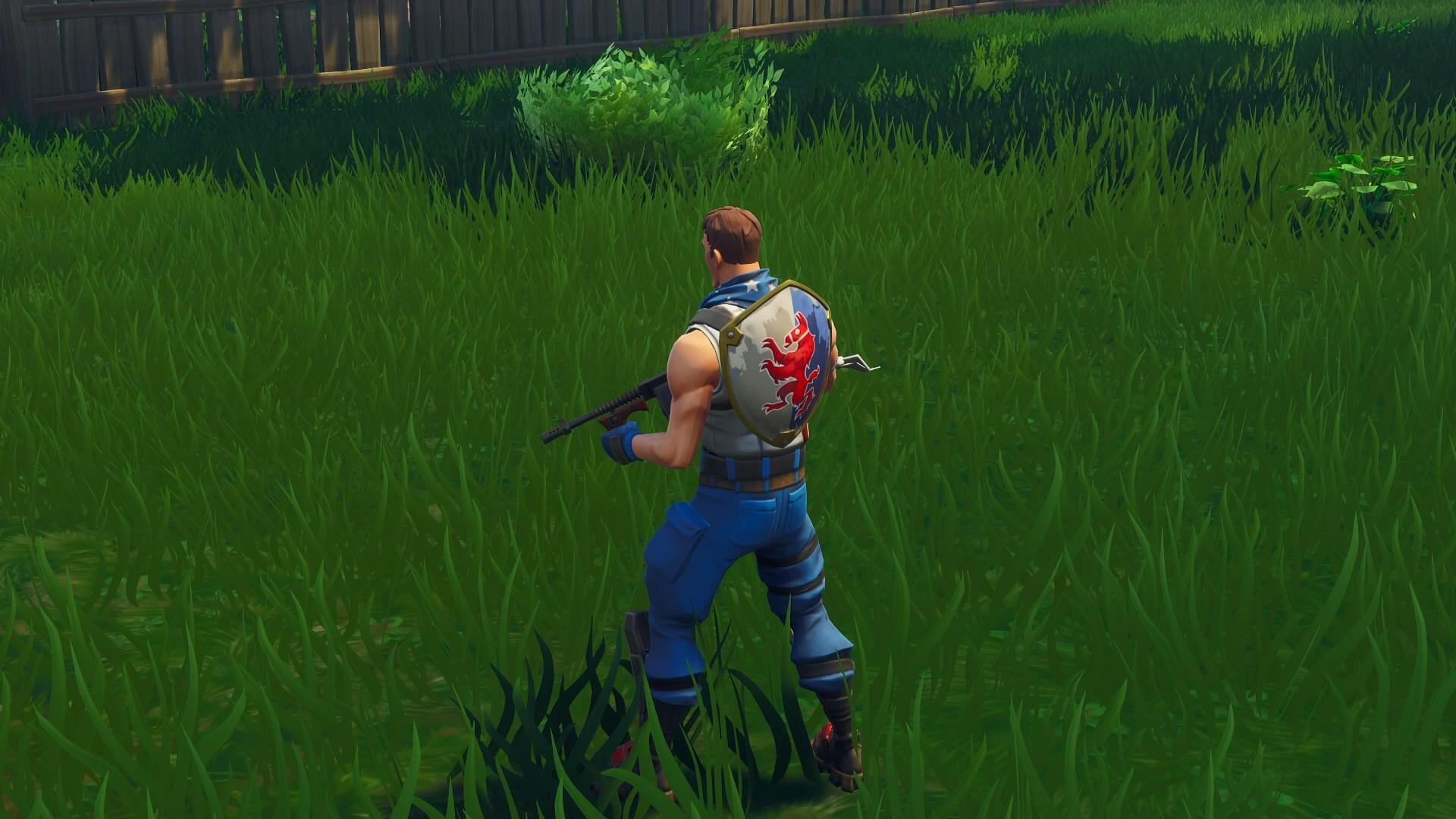 The new Star-Spangled Trooper skin with the Squire Shield back bling ...