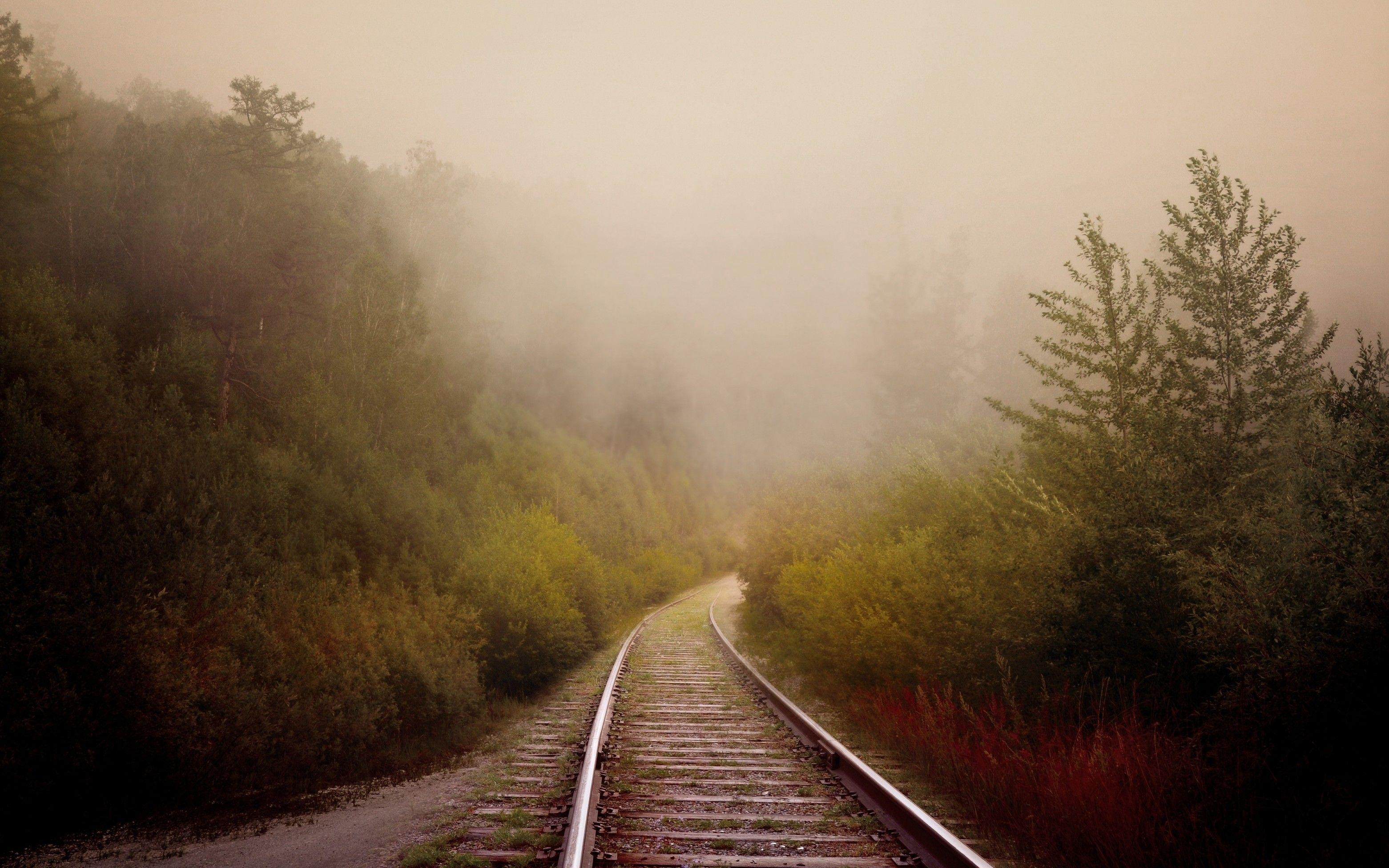 Download 3123x1952 Railway, Trees, Fog Wallpapers