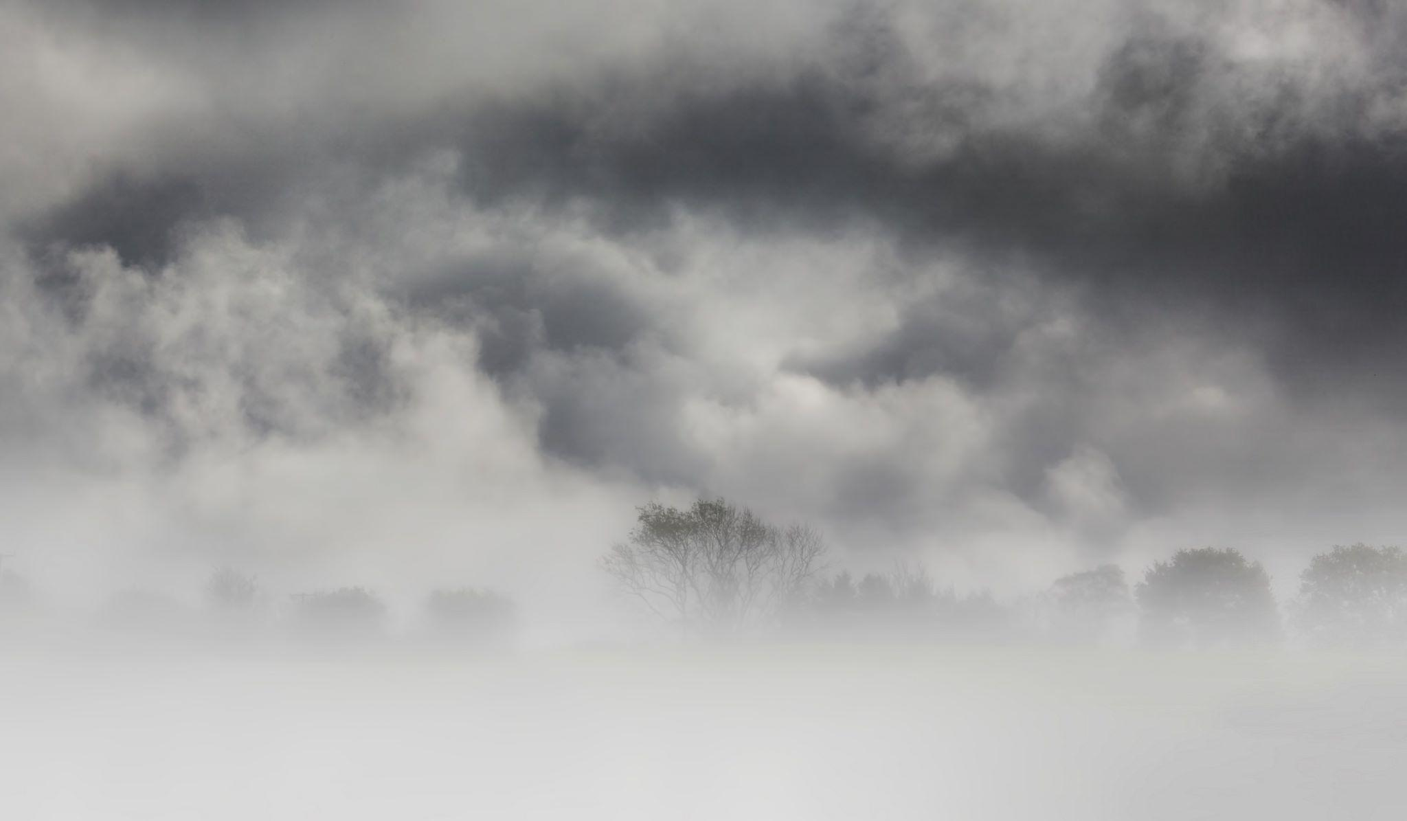 Fog Wallpapers 25
