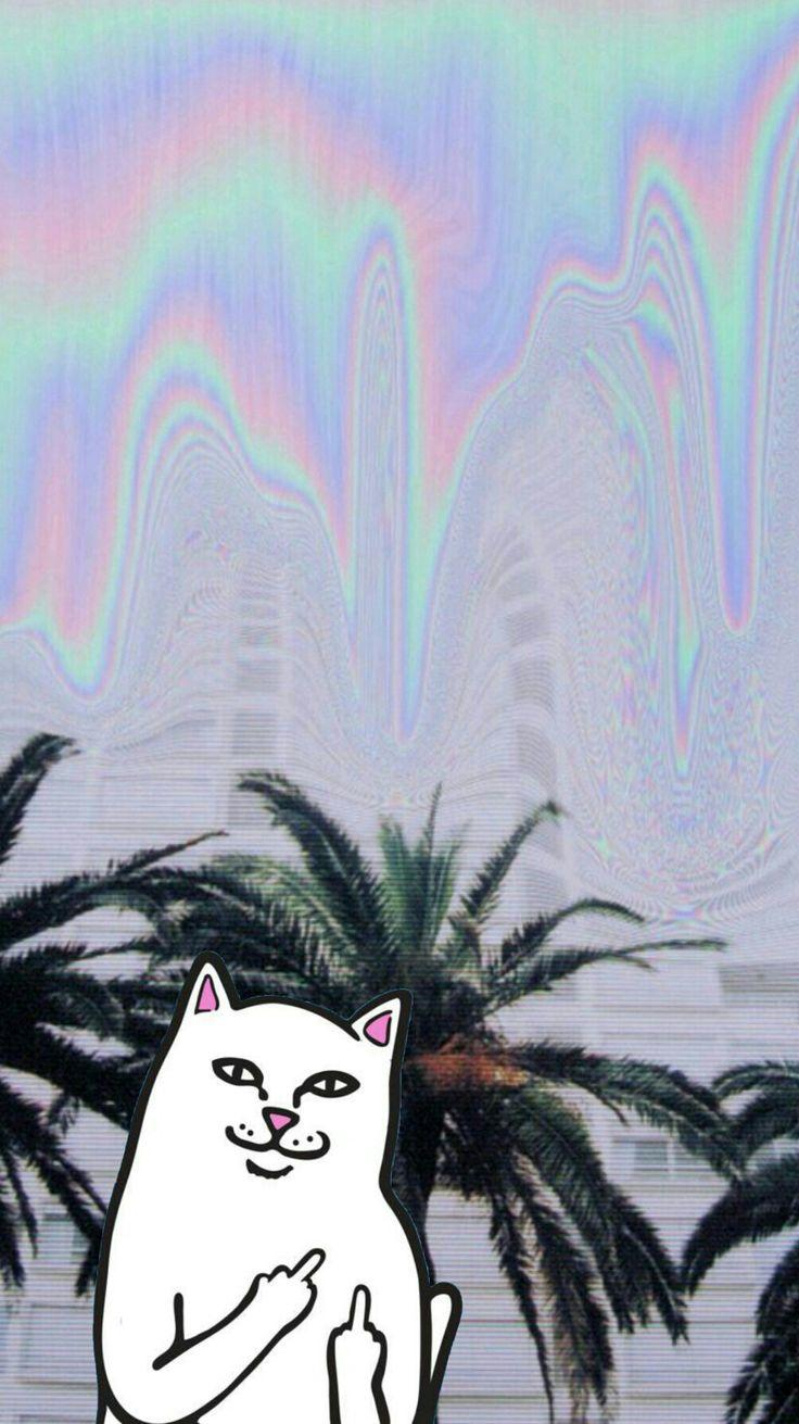 Ripndip Wallpapers Wallpaper Cave