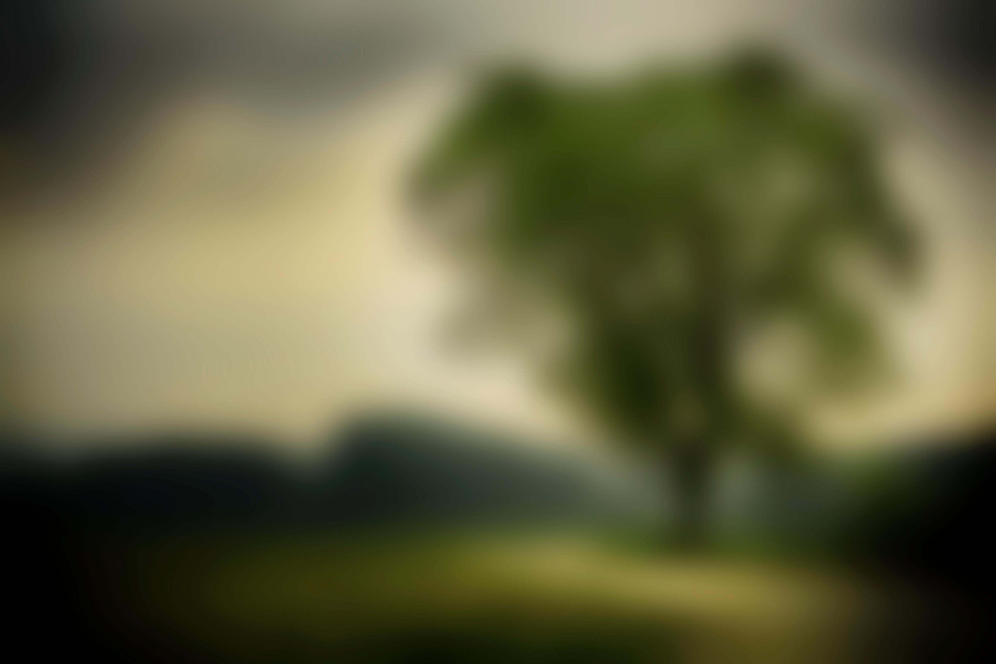 31 Nature Background Blur Picsart Wallpaper Hd Basty Wallpaper