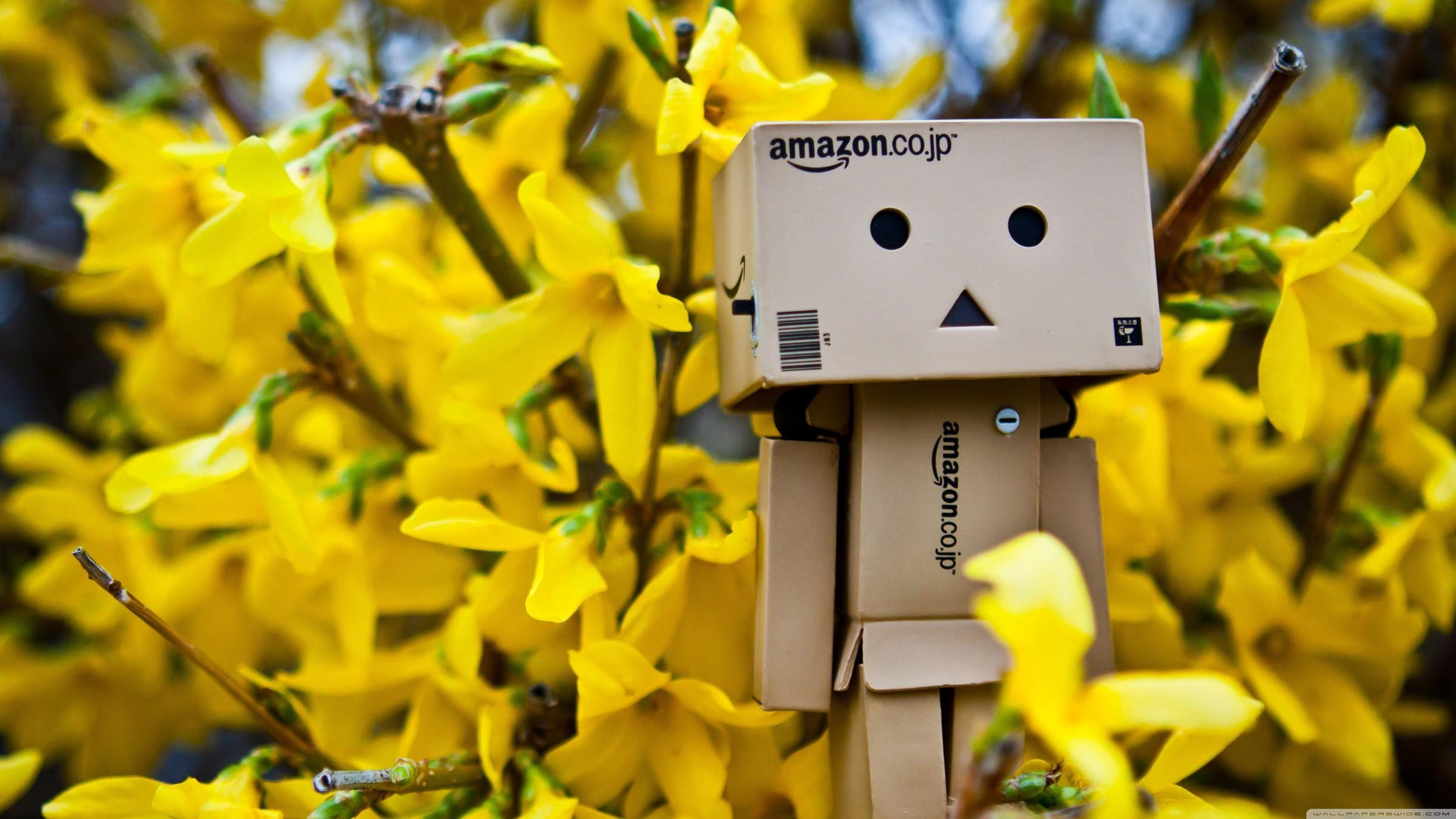 Danboard abstract amazon spring time wallpapers