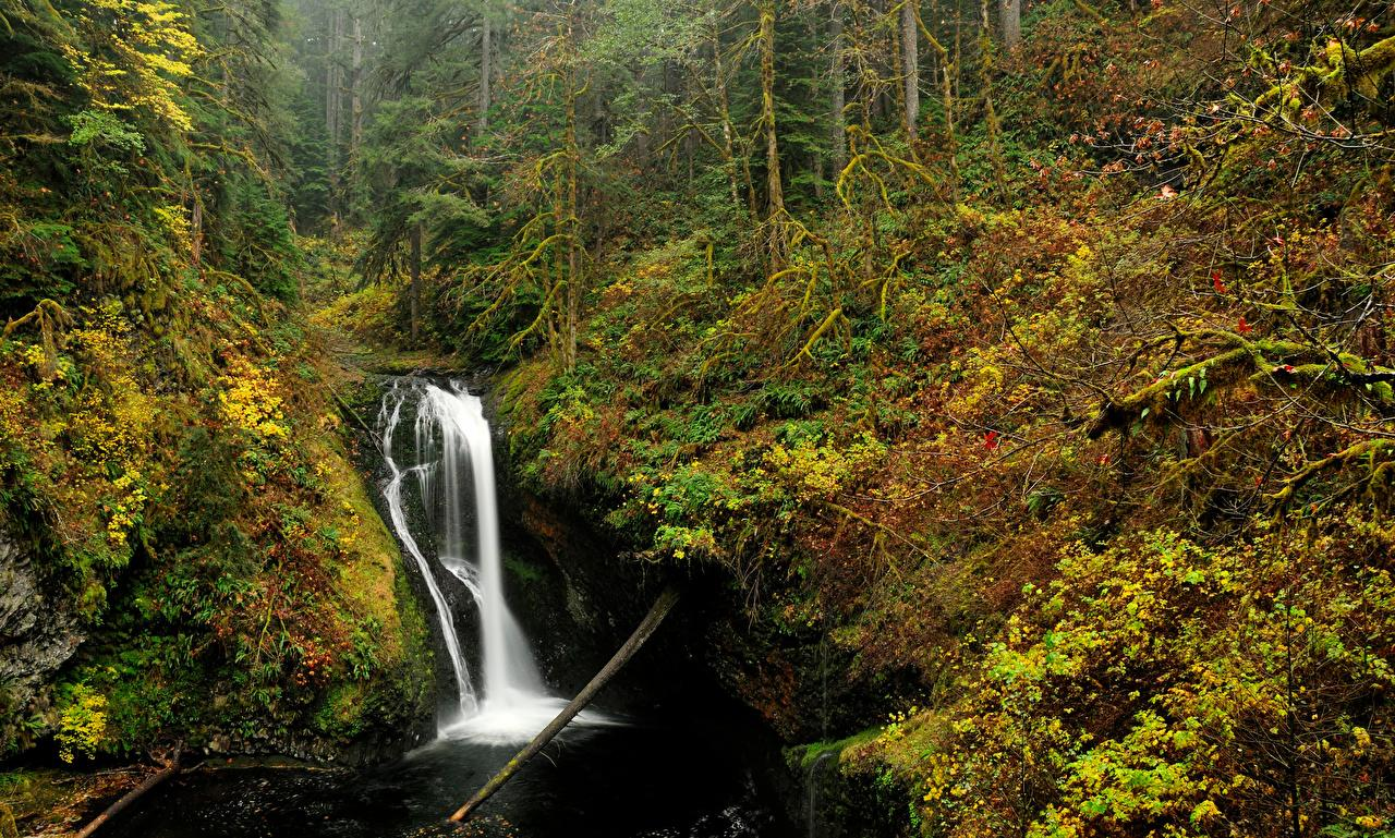Wallpapers USA Oregon Nature Autumn Waterfalls Forests