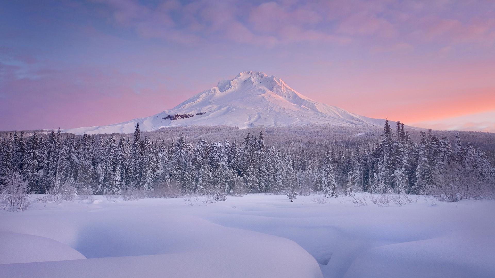 Mt. Hood, Oregon. : wallpapers