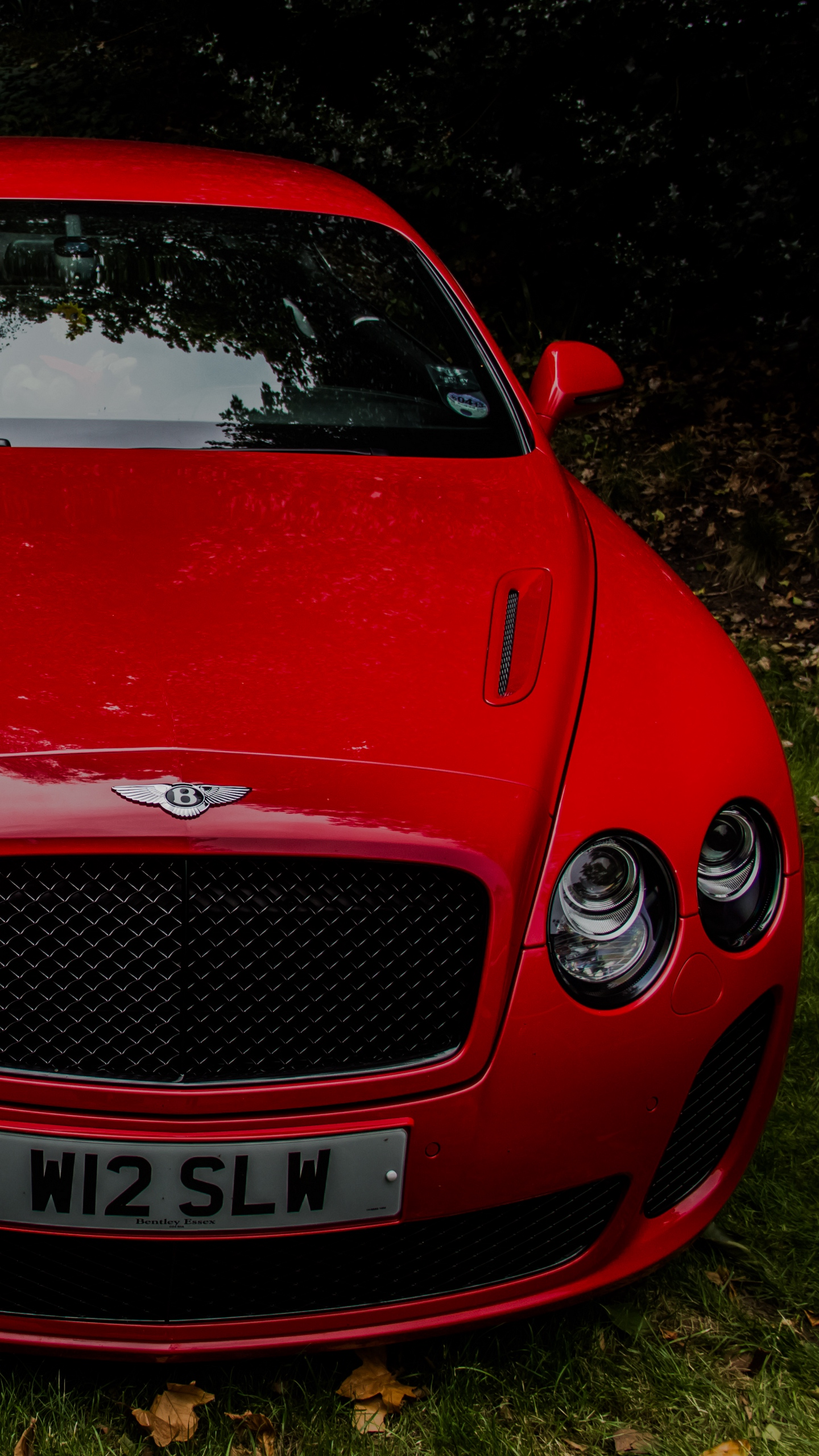 Download wallpapers 1440x2560 bentley continental gt, red, front view