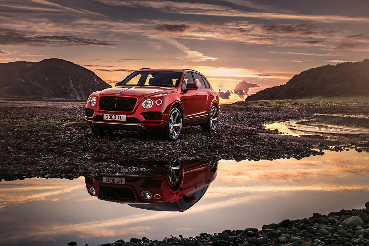 Wallpapers Bentley 2018 Bentayga V8 Worldwide Red Cars