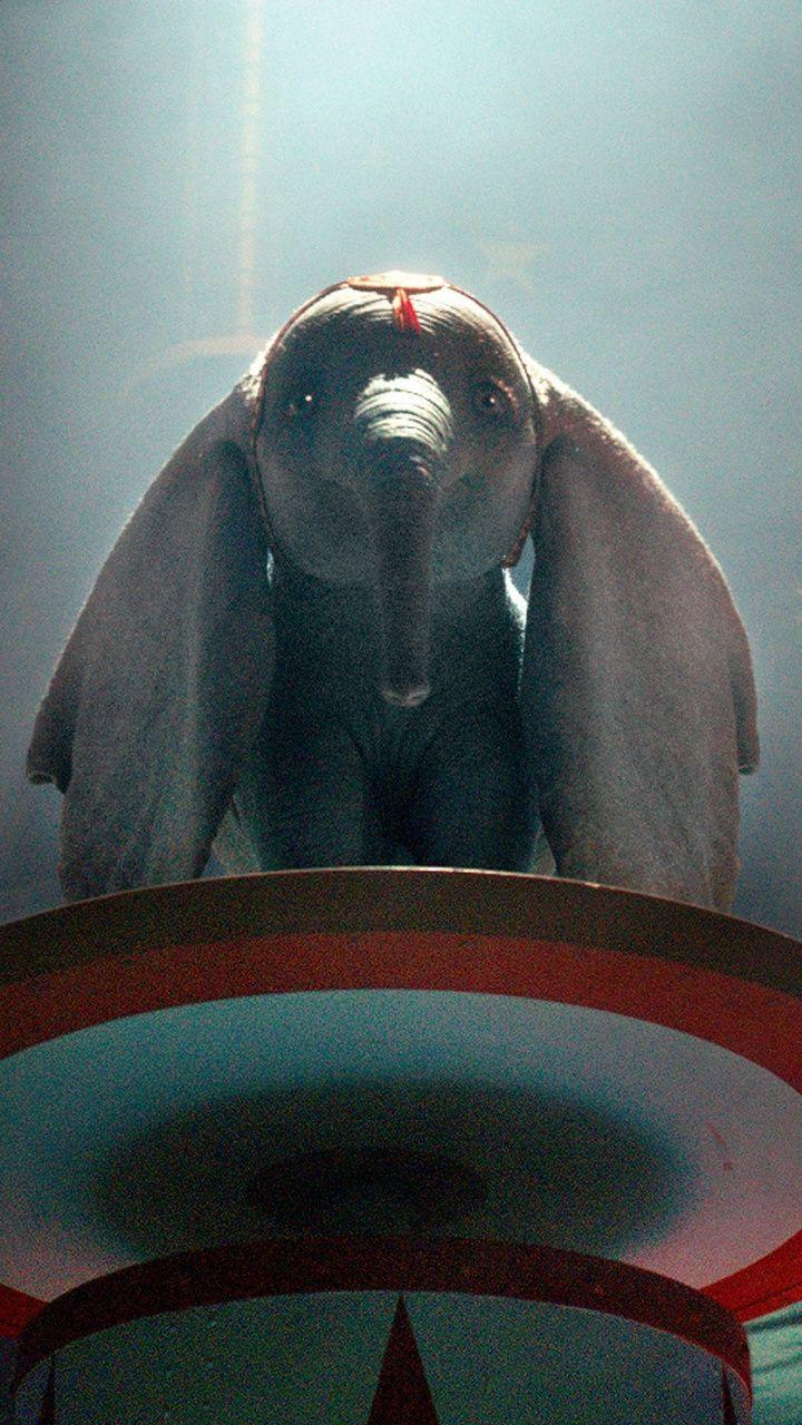 Dumbo 2019 Wallpapers Wallpaper Cave