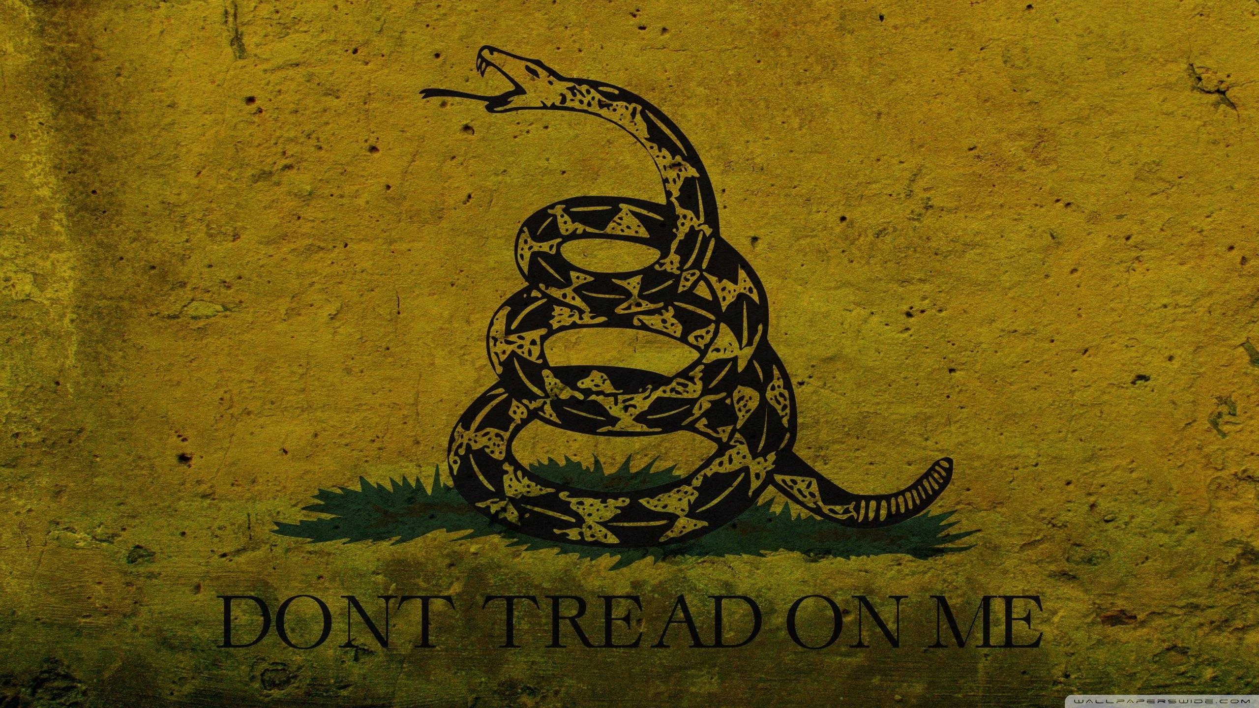 Обои snake, Dont tread on me, Metallica. Музыка foto 9