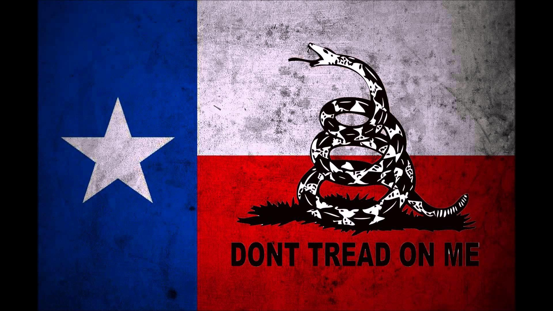 Dont Tread On Me American Flag Wallpaper Best Flag Image