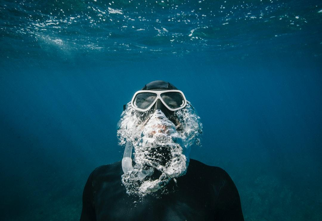 500+ Free Diving Pictures