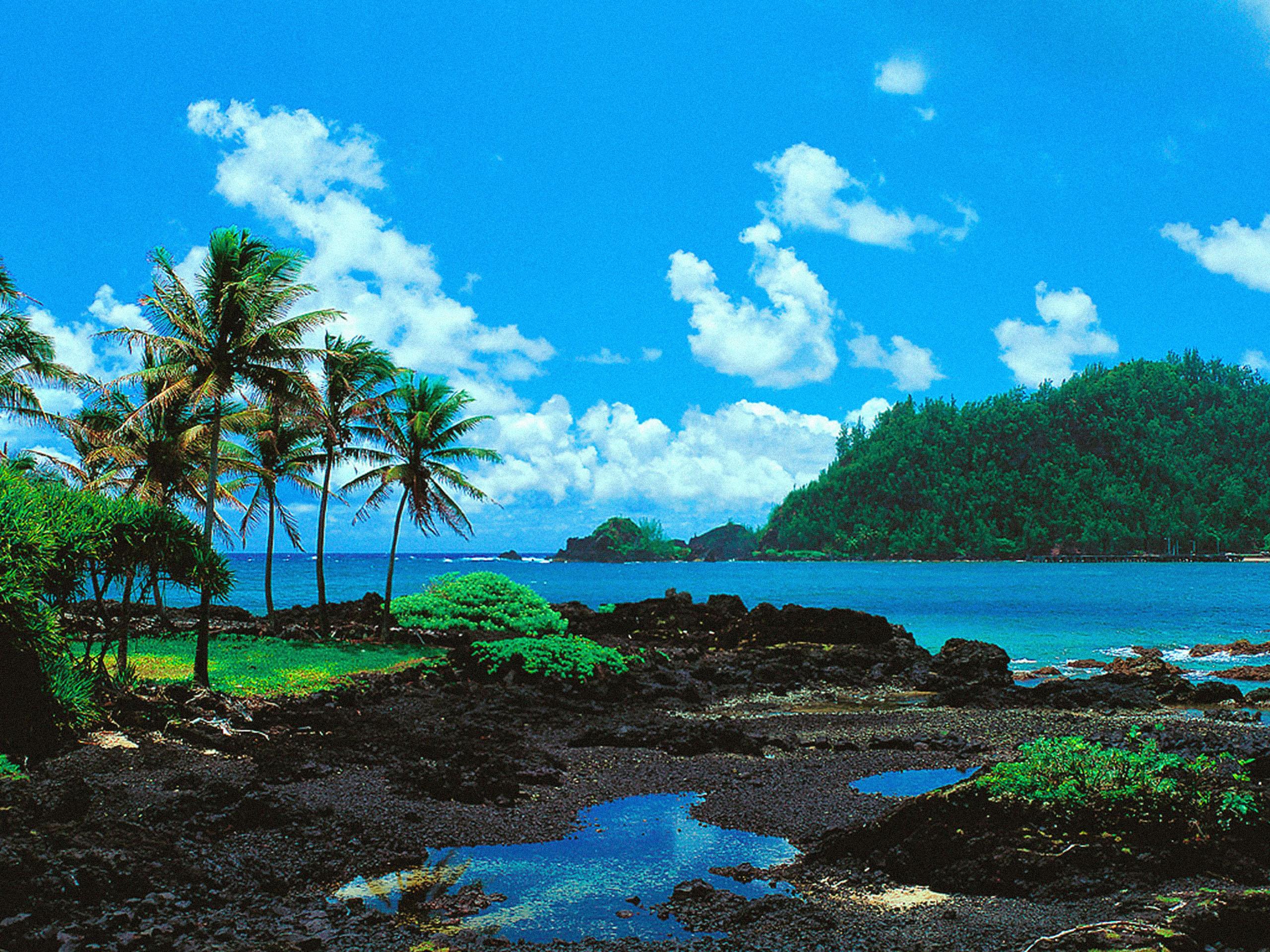 Hawaii Wallpapers Wallpaper Cave