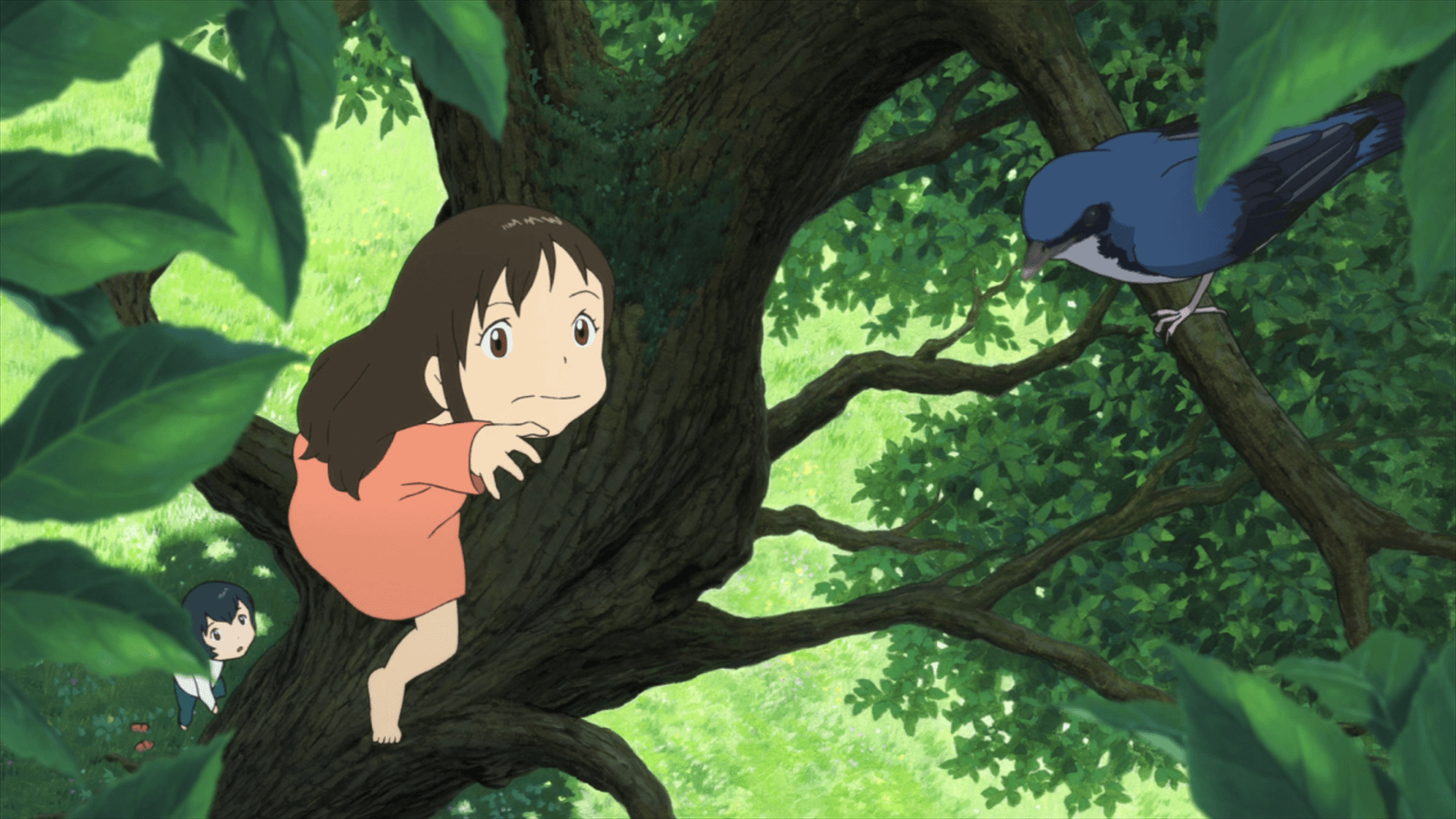 Ame and the bird, Wolf Children Wallpapers and Backgrounds Image