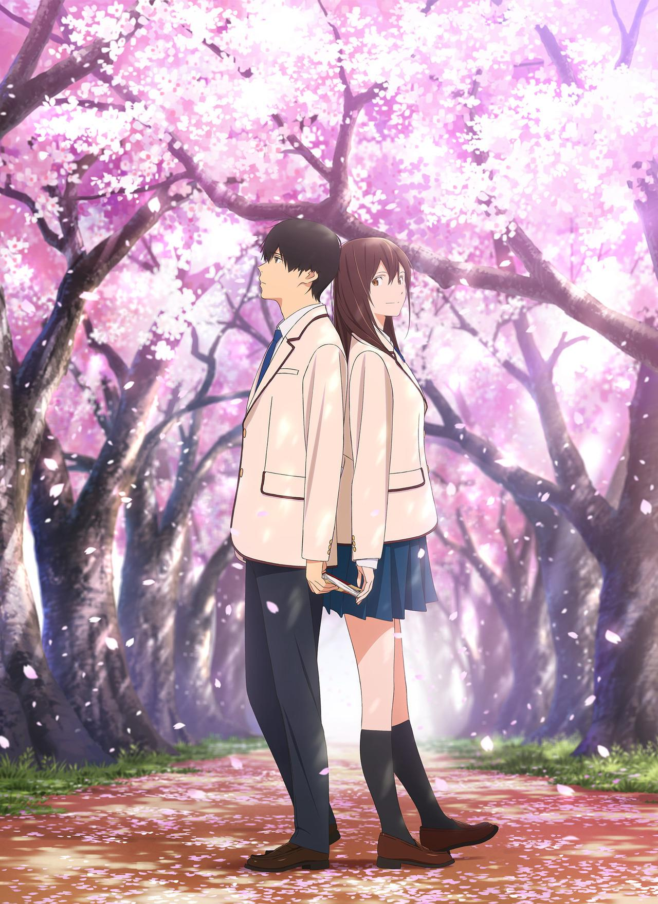 I Want To Eat Your Pancreas Wallpapers Wallpaper Cave